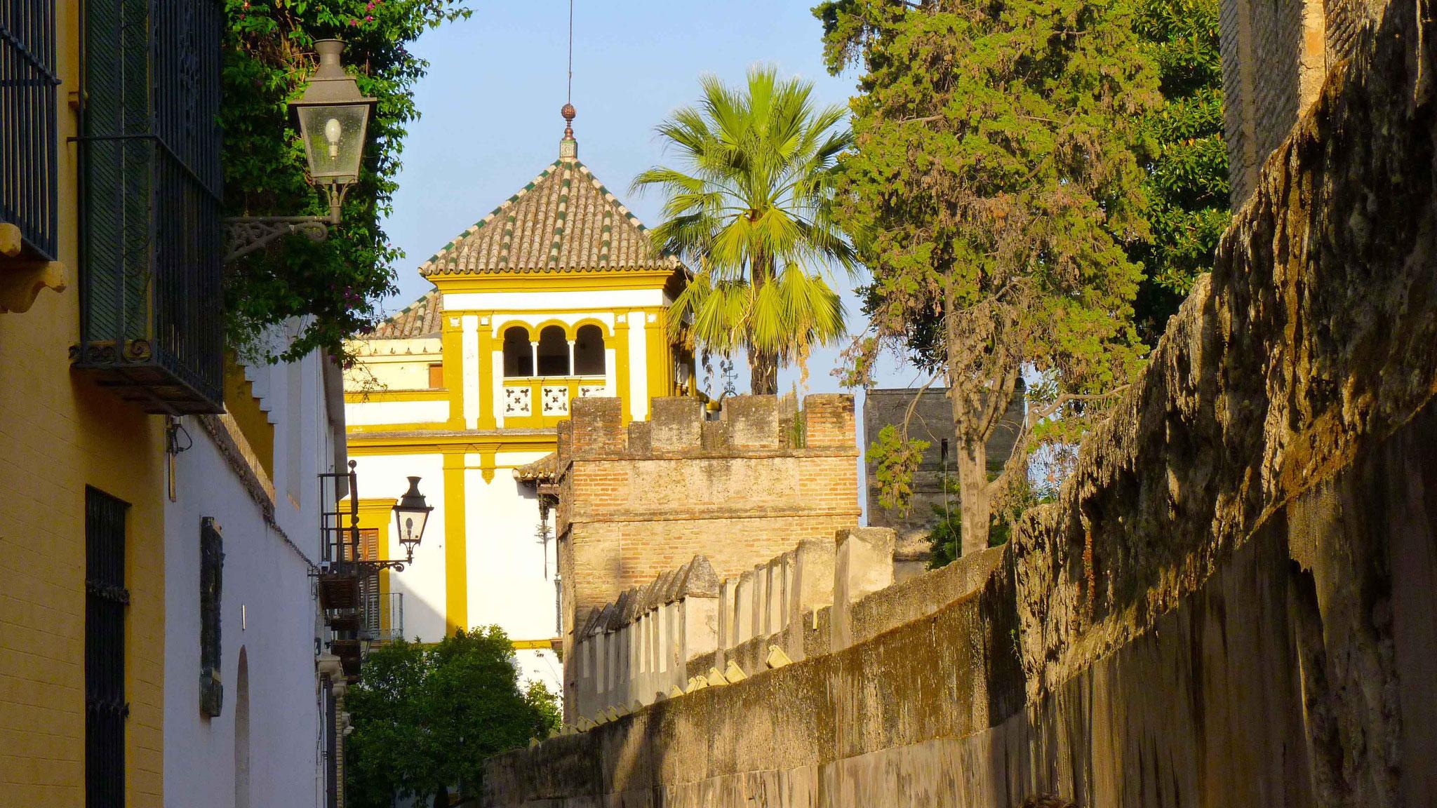 Magnifique Séville - Espagne