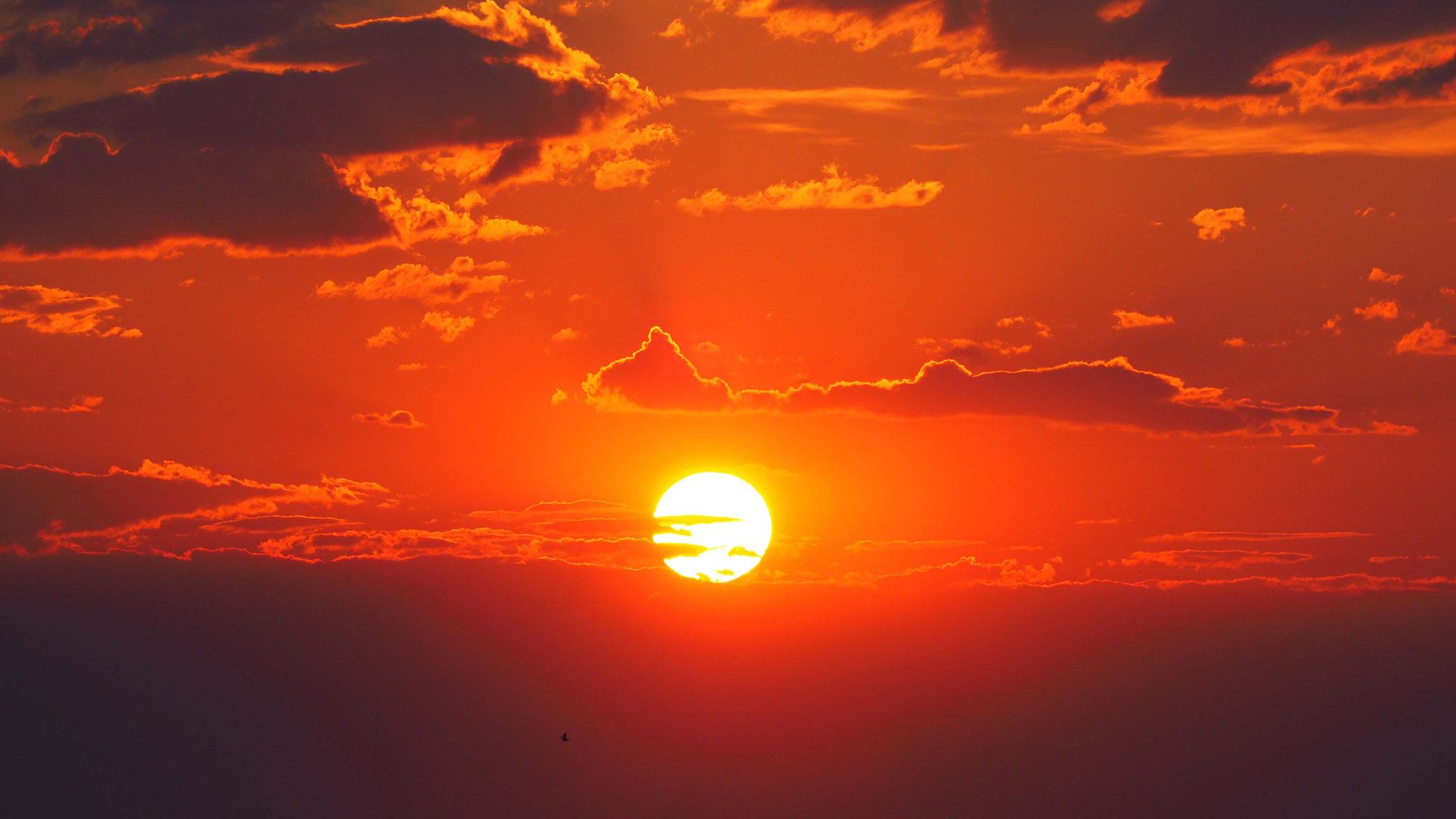 Coucher de soleil sur Namutoni - Namibie