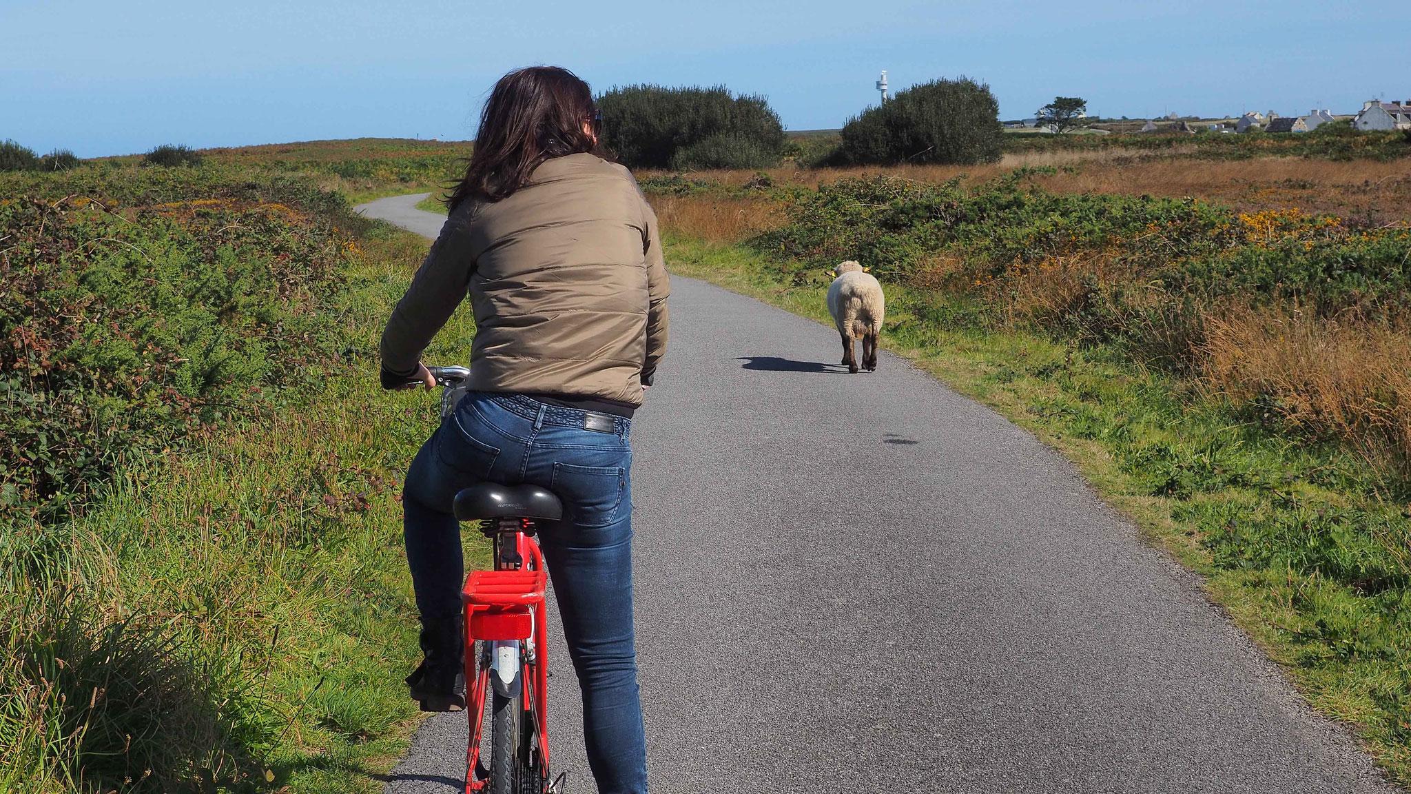 Découvrir Ouessant à vélo