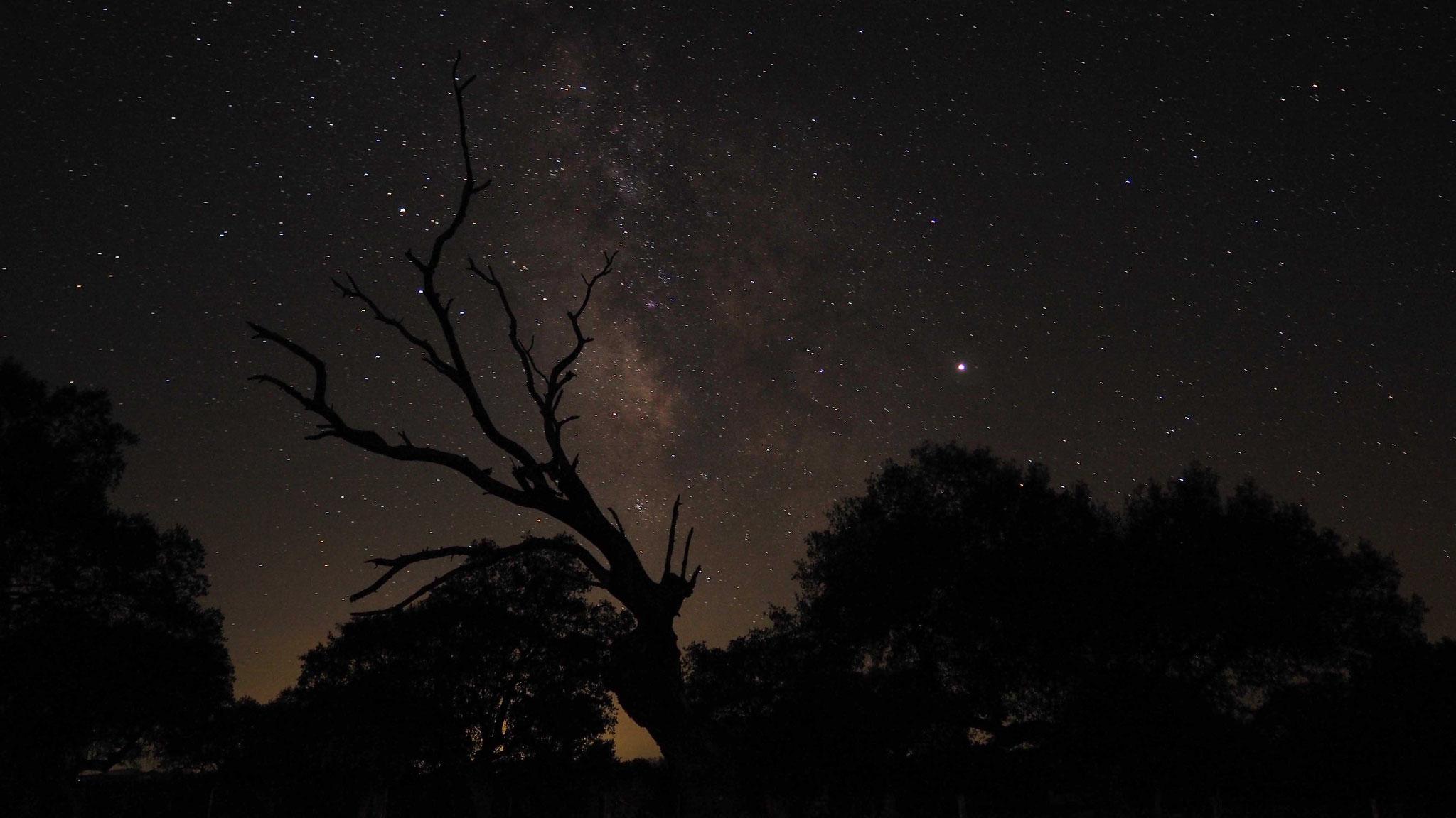 Le ciel étoilé en Estrémadure - Espagne