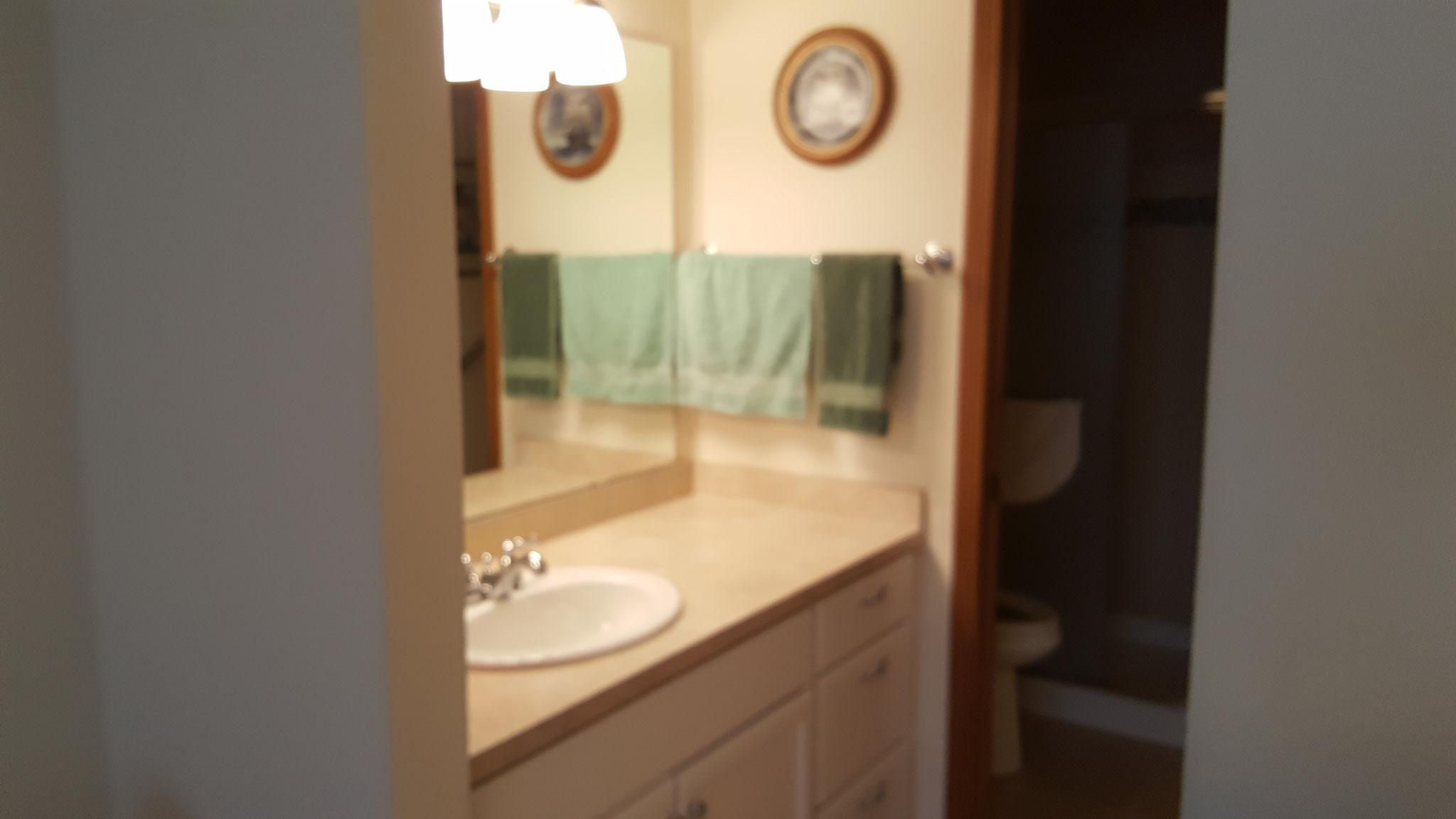 Bathroom Before Staging