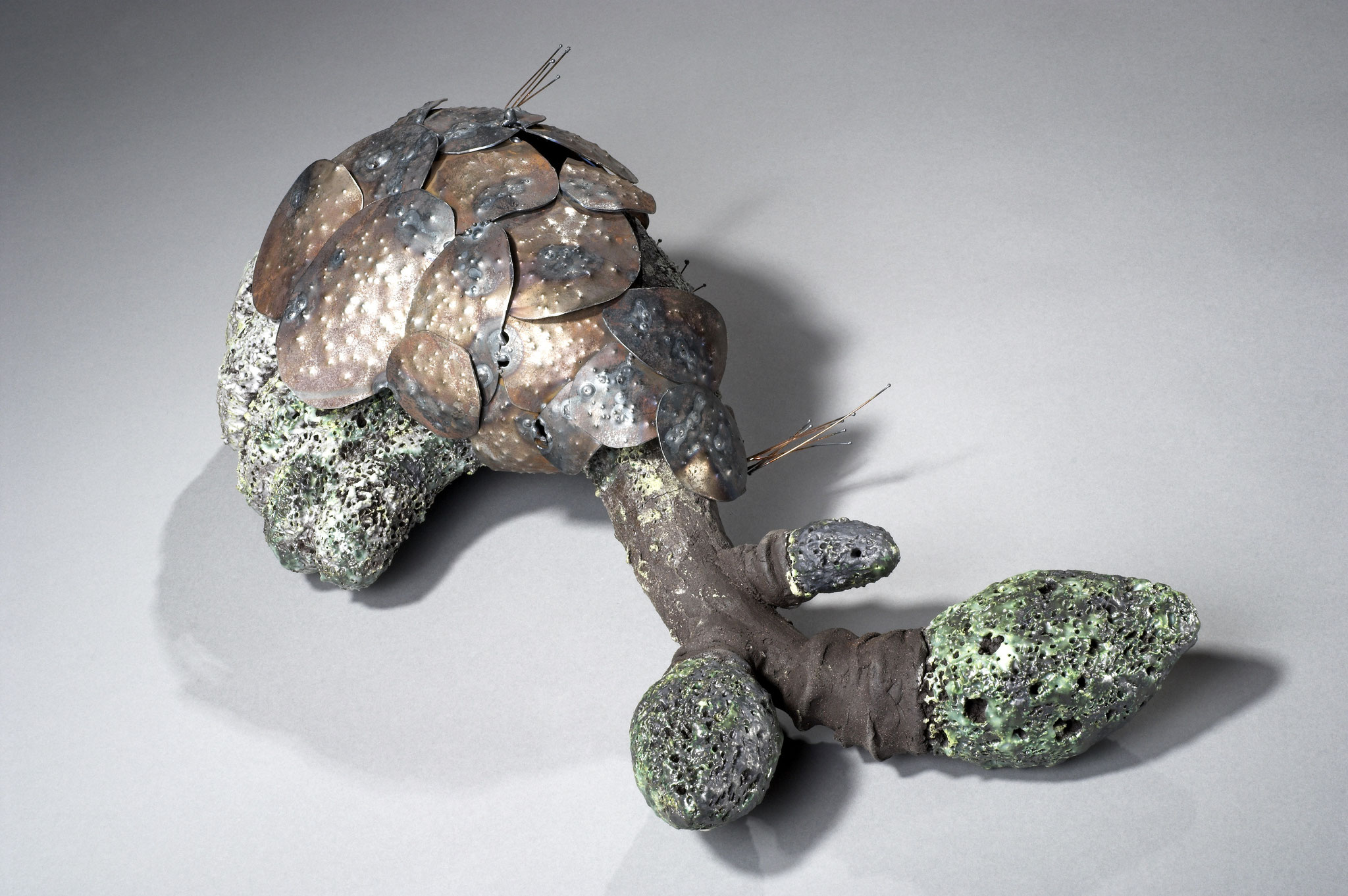 Morchelsulpe mit Kupferpanzer