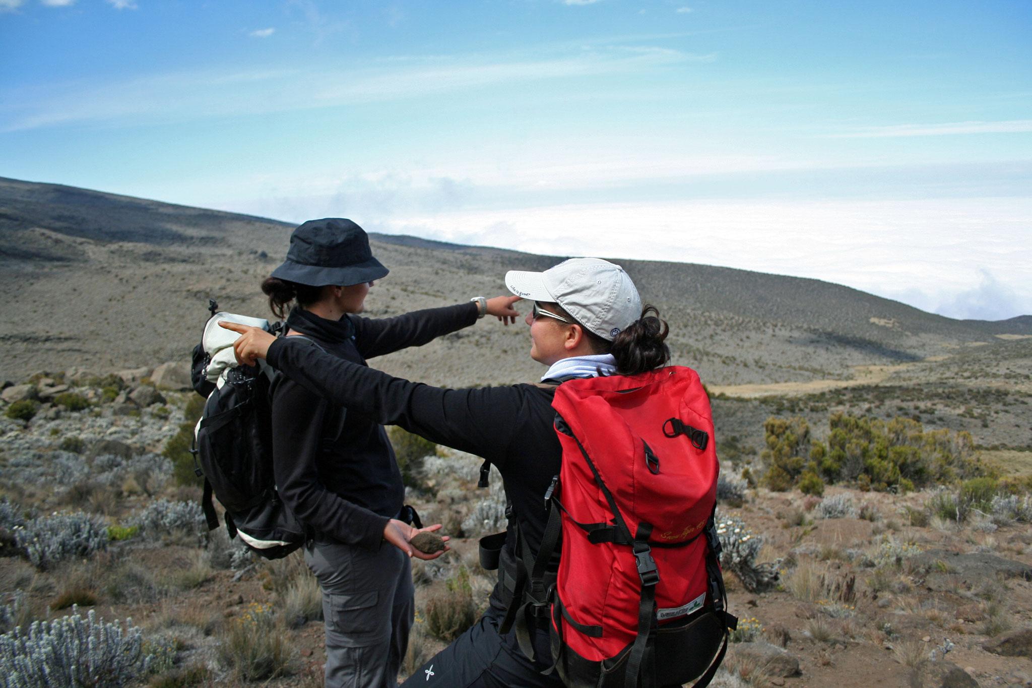Da oder dorthin? Am Weg zum Kilimanjaro 2008