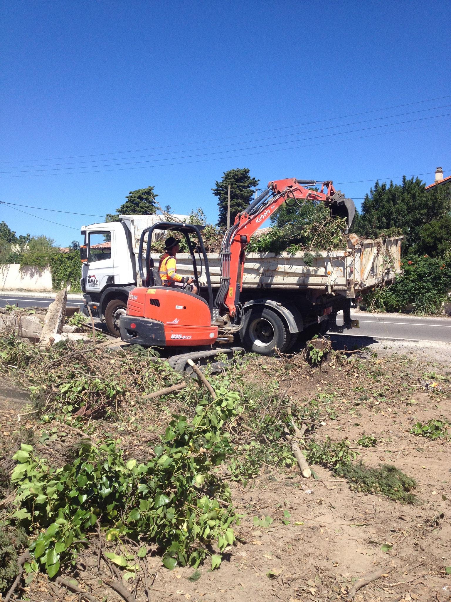 arrachage d'arbre et nettoyage terrain pour préparation d'une plate forme