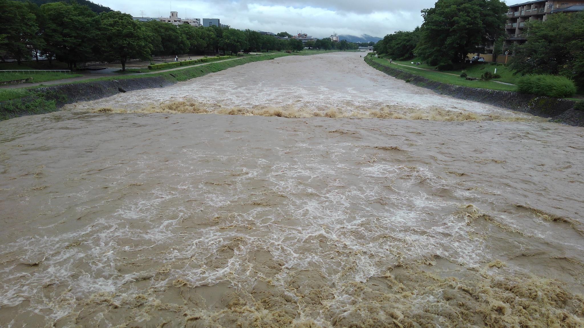 西賀茂橋より下流 2年前の豪雨より賀茂川の水位は1mほど低い