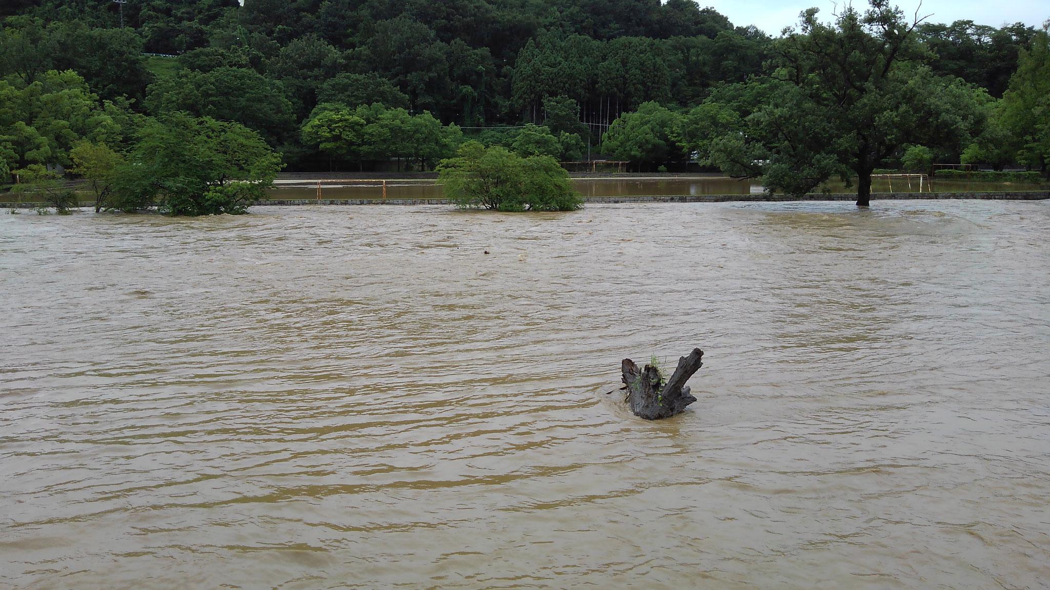 柊野グランド横 グランド内への浸水はまだない状況