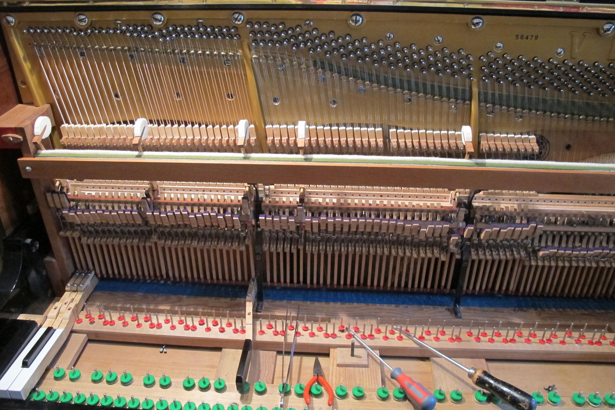 fertig eingeschraubte Klavierdämpfung