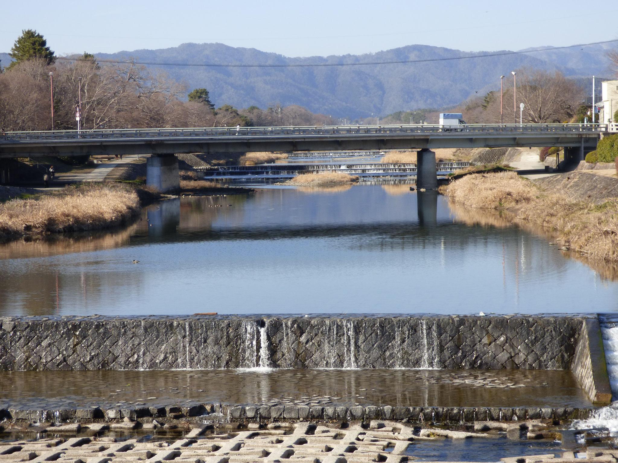 鴨川です。ベストお散歩コース。KAMOGAWA river