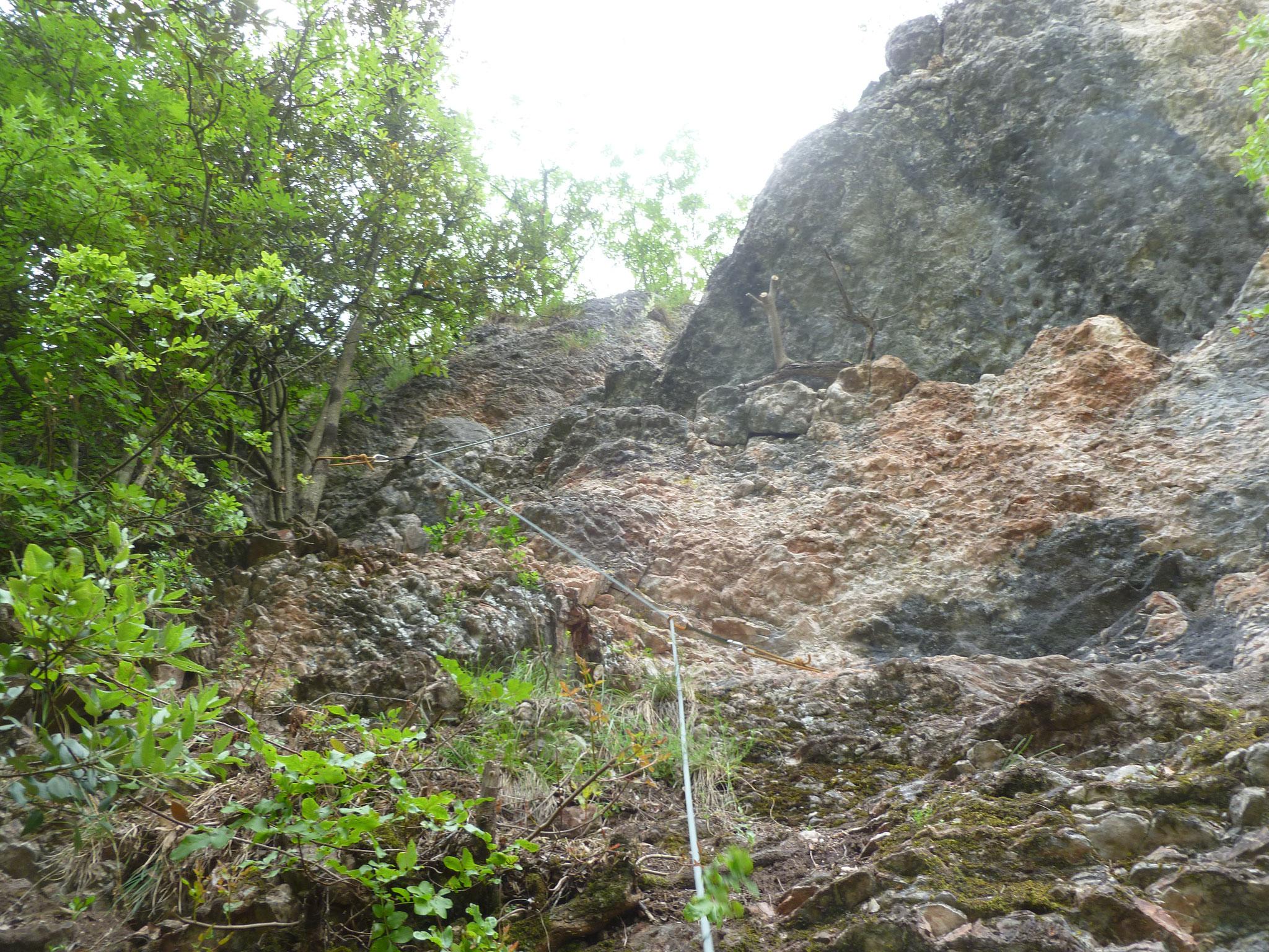 Die Ausstiegslänge: in der Pungitopo sehr leicht und botanisch