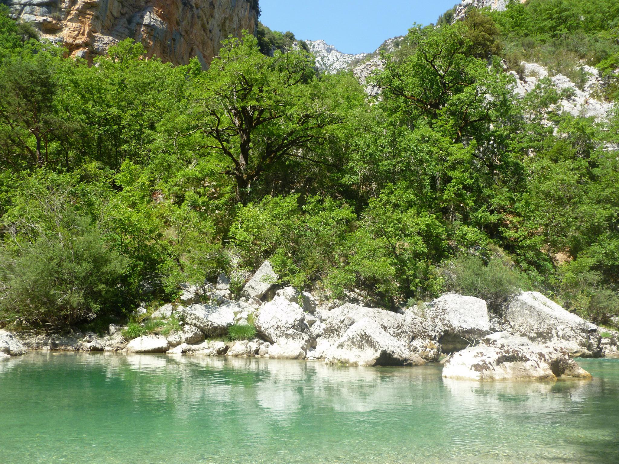 ...oder schöner unterhalb vom Chalet de la Maline