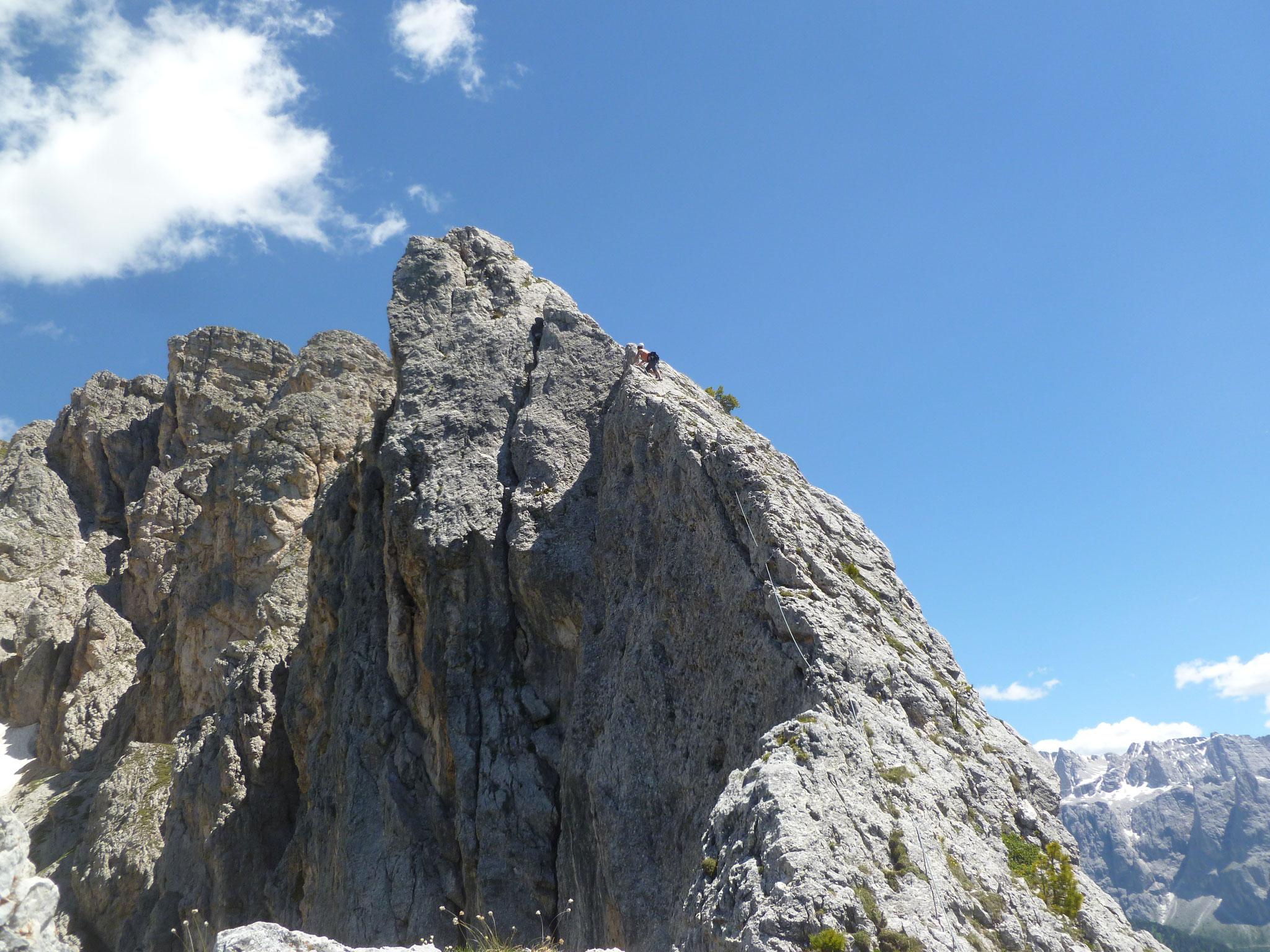 Diese Eleganz! Diese Furchtlosigkeit! Eindeutig die Alpinschnecke!