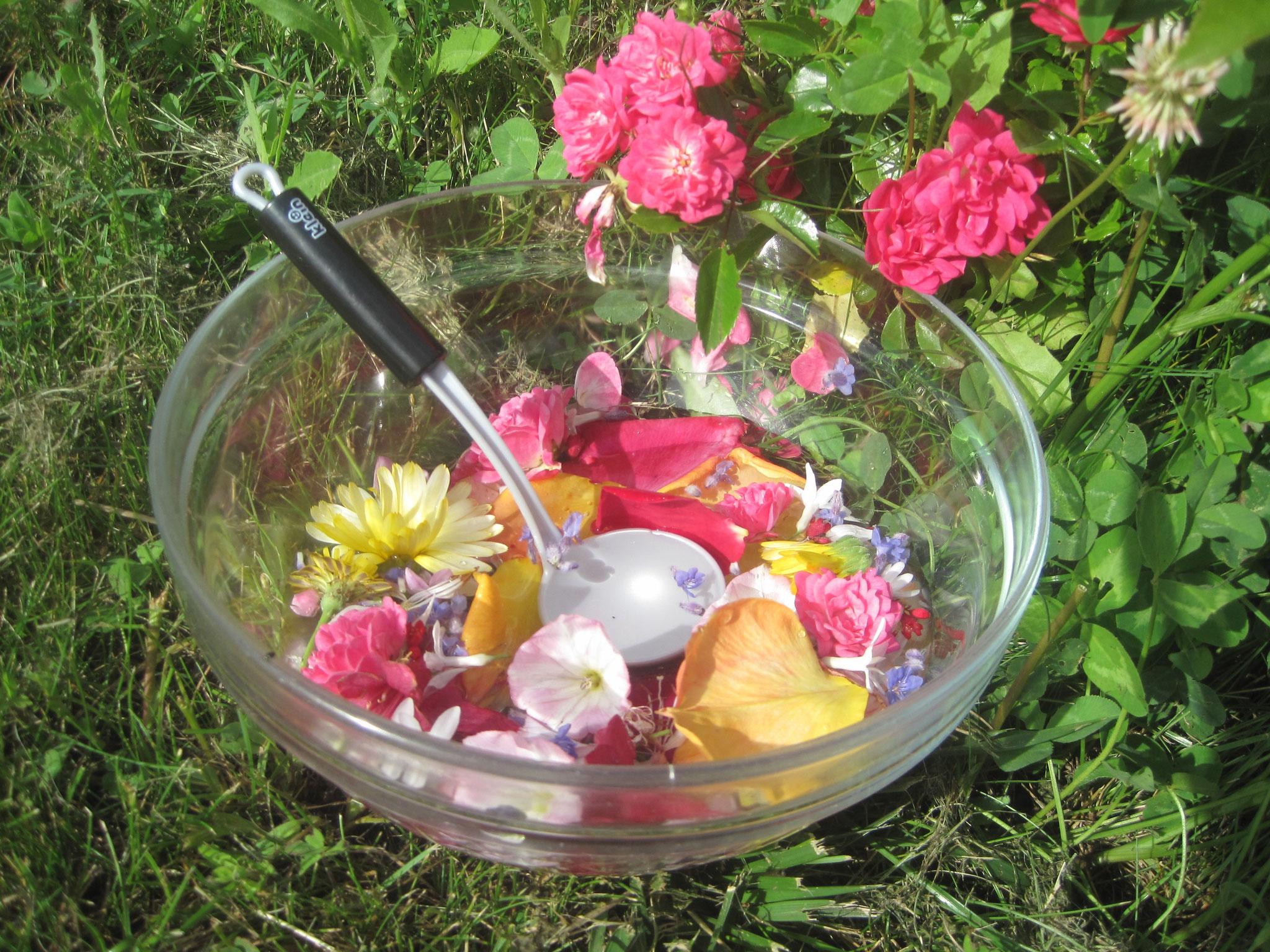 Récolte de fleurs préparée en soupe