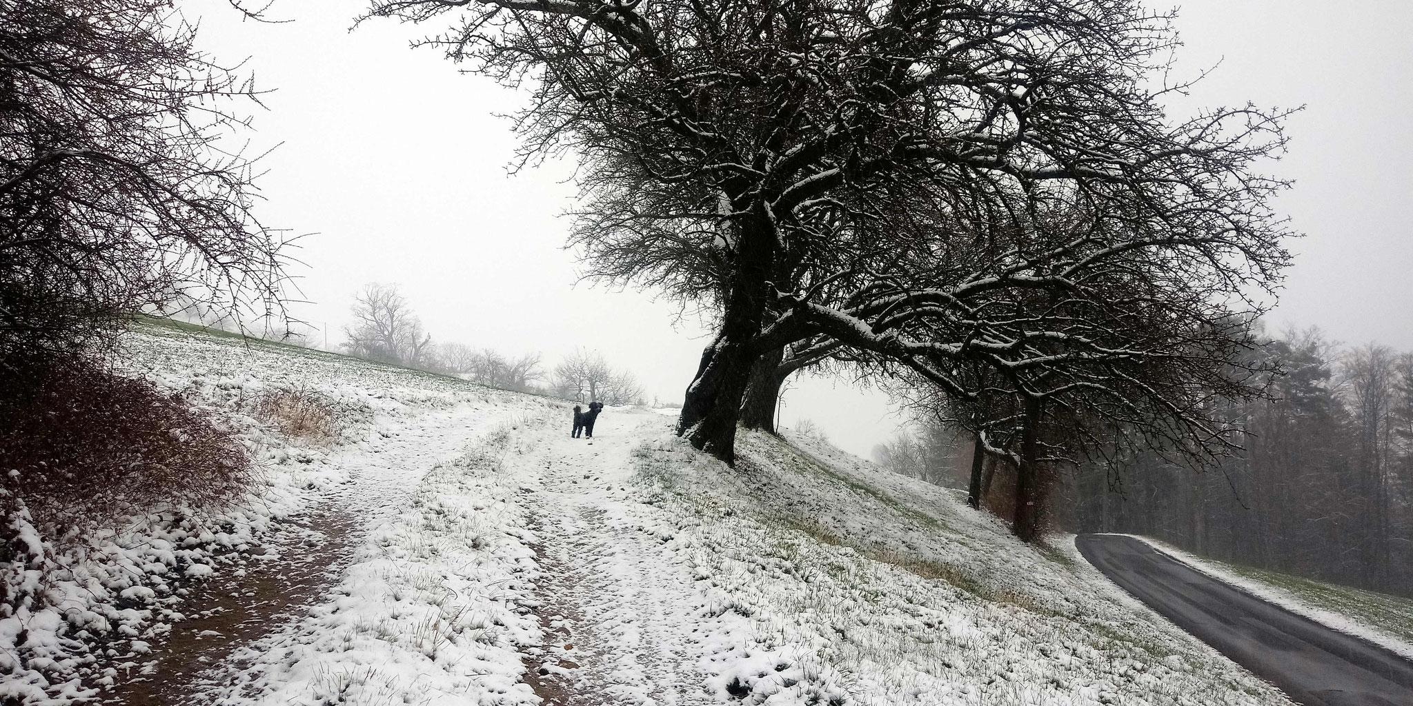 Schnee!!! Juchee!!