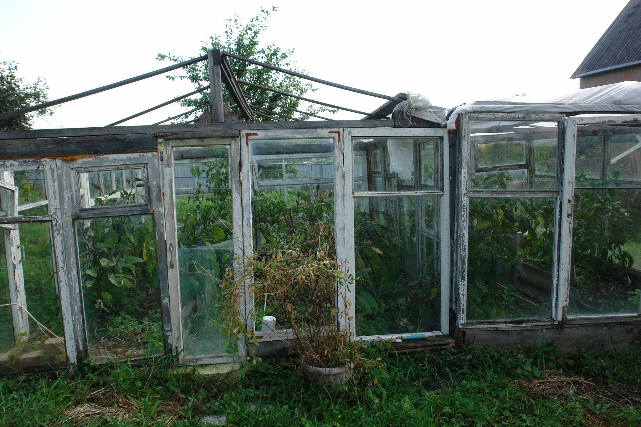 ダーチャの温室