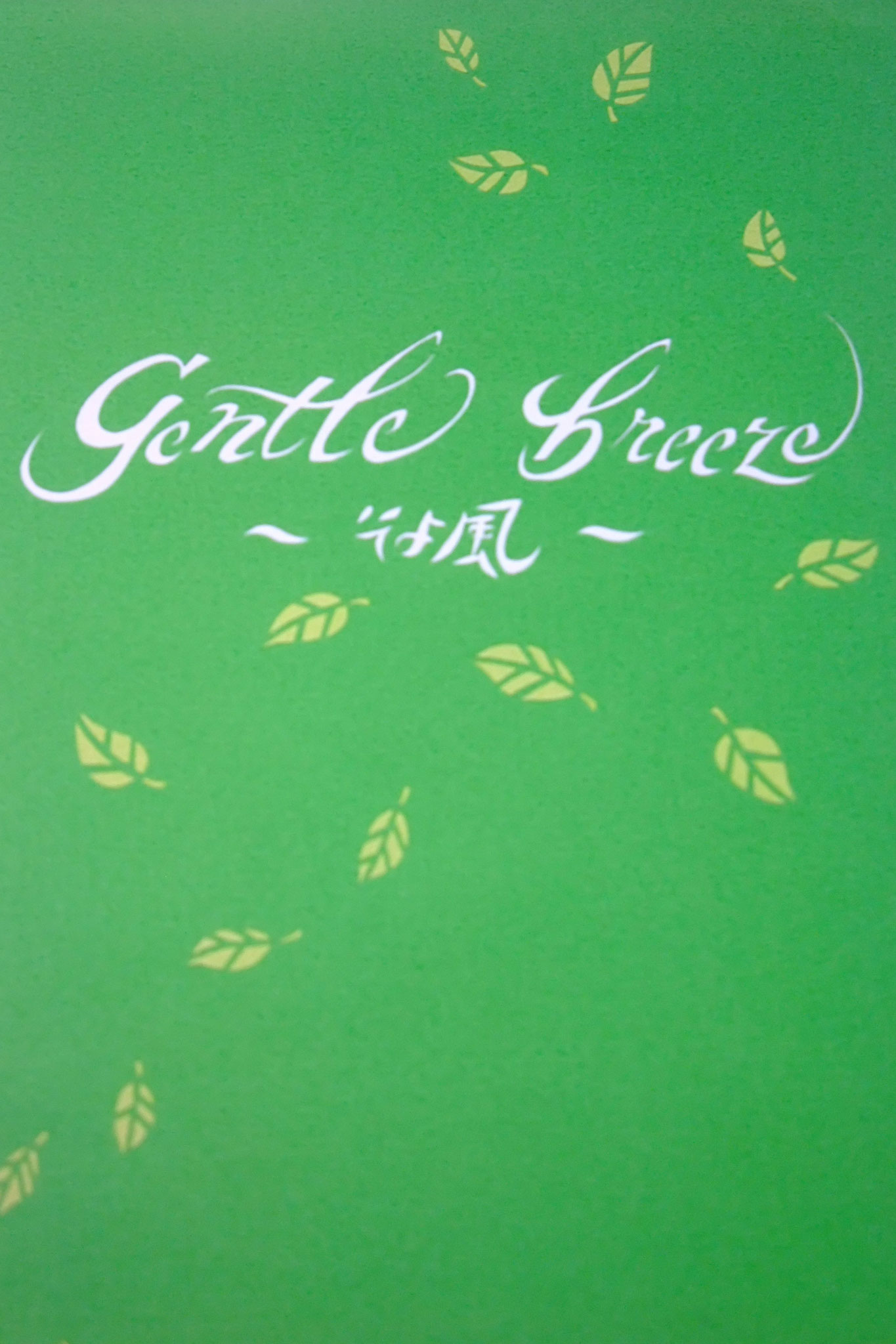 2013年春 個展 gentle breeze ~そよ風~