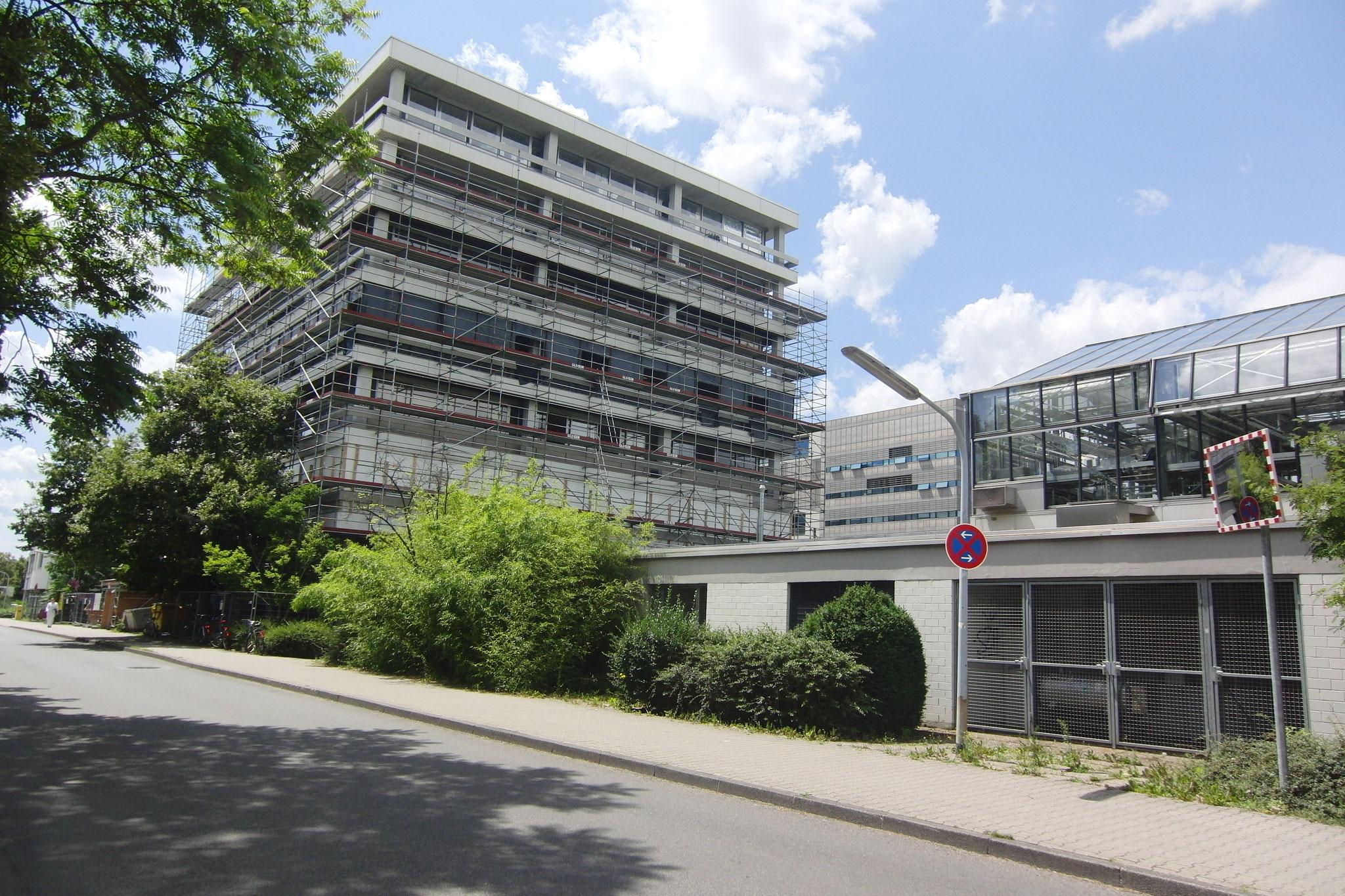 Zoologisches Institut Universität Heidelberg