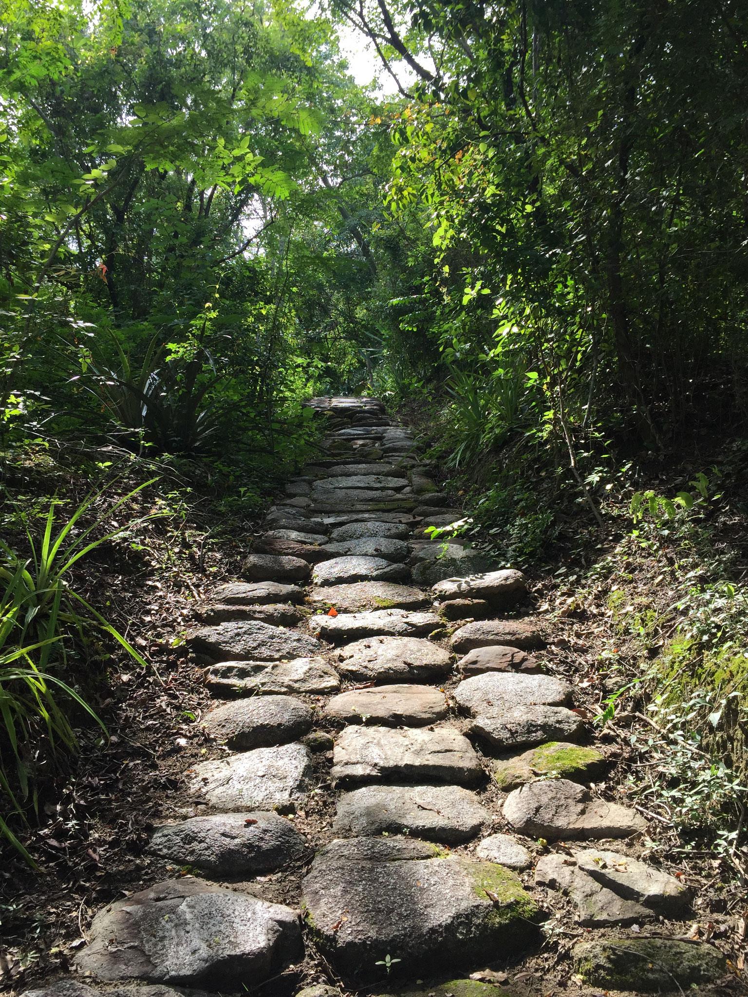Tayrona Path