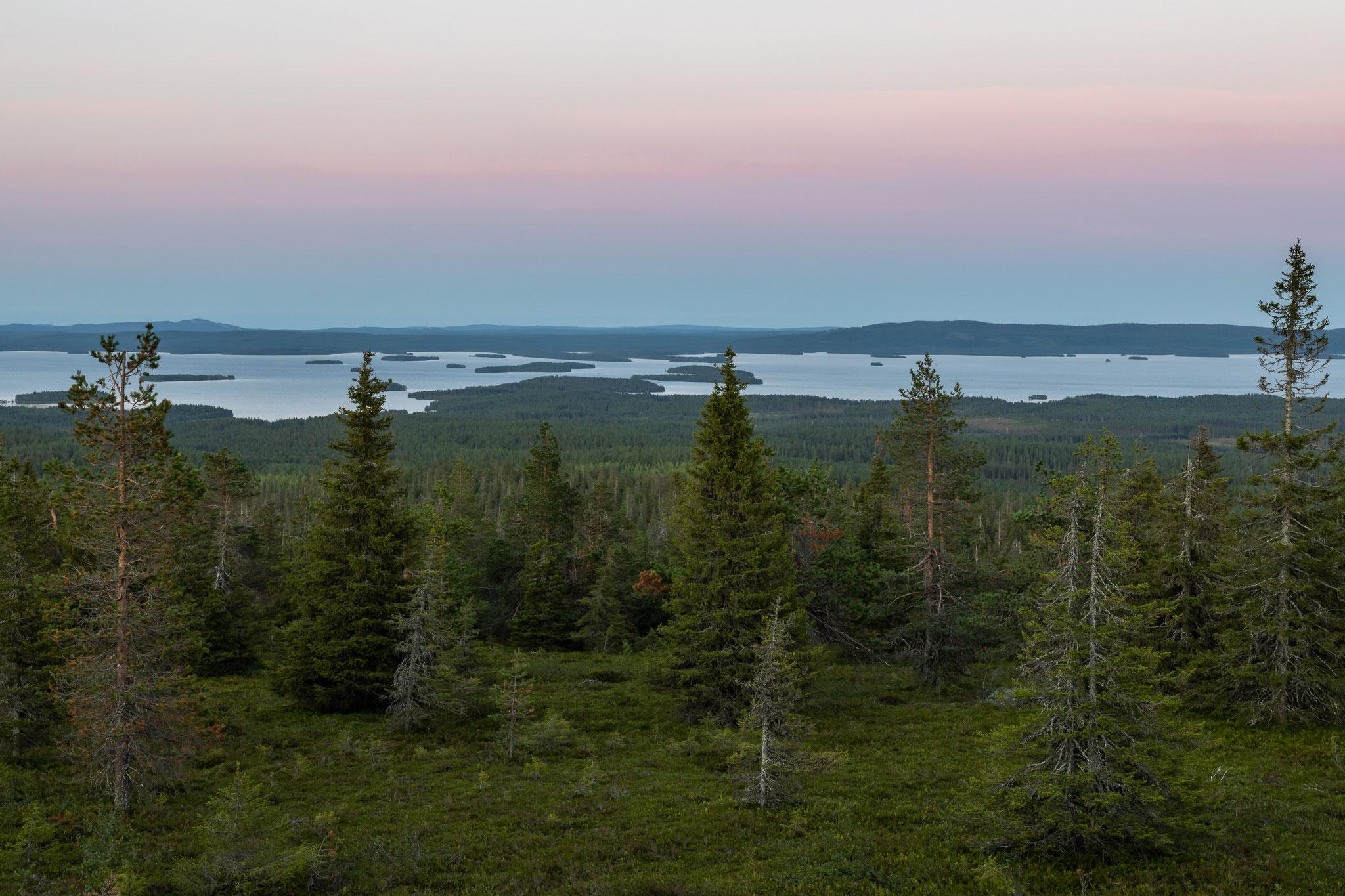 Ausblick vom Riisitunturi in Südlappland