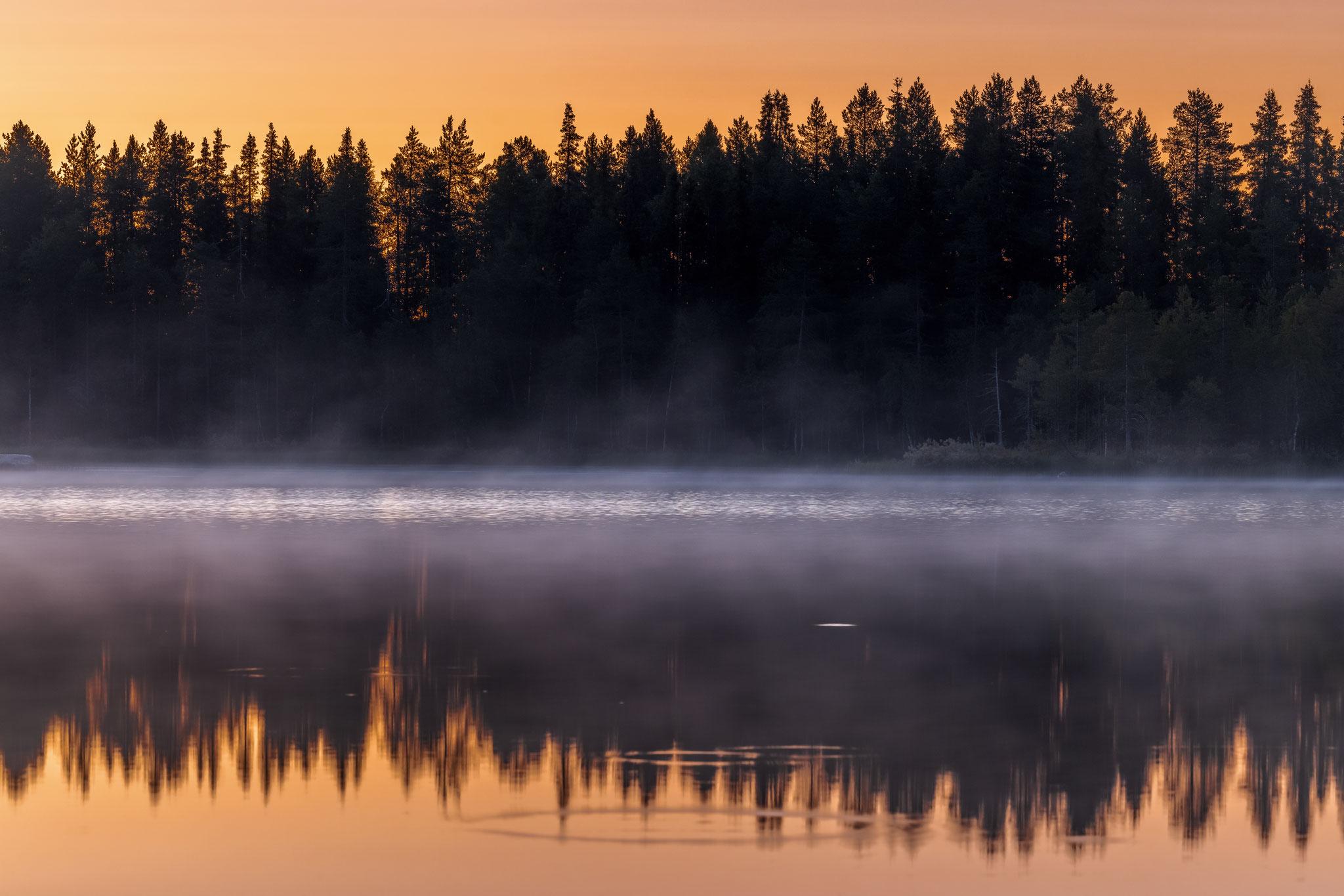 Abendnebel steigen aus dem Wasser