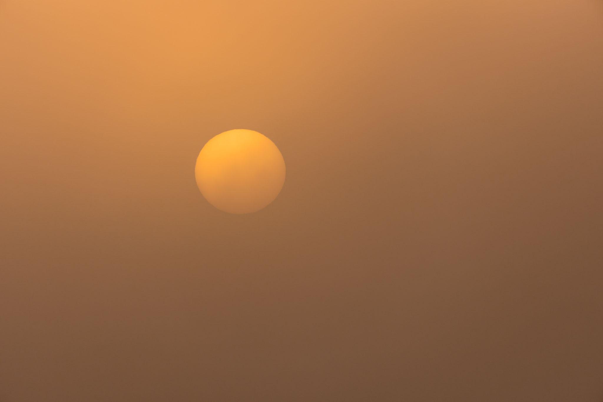Die Sonne erhebt sich über dem morgendlichen Dunst...