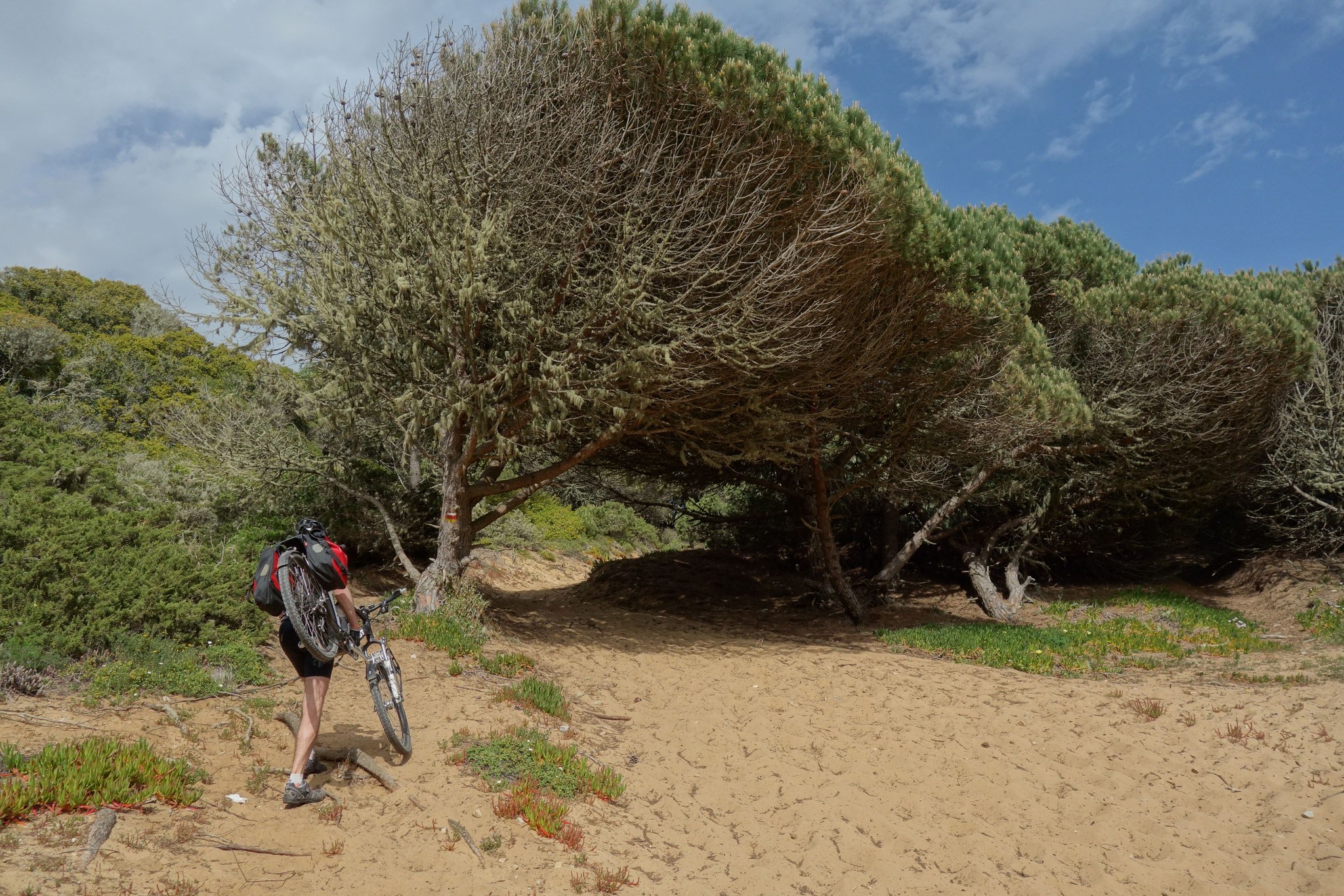 MTB-Tour bei Sintra