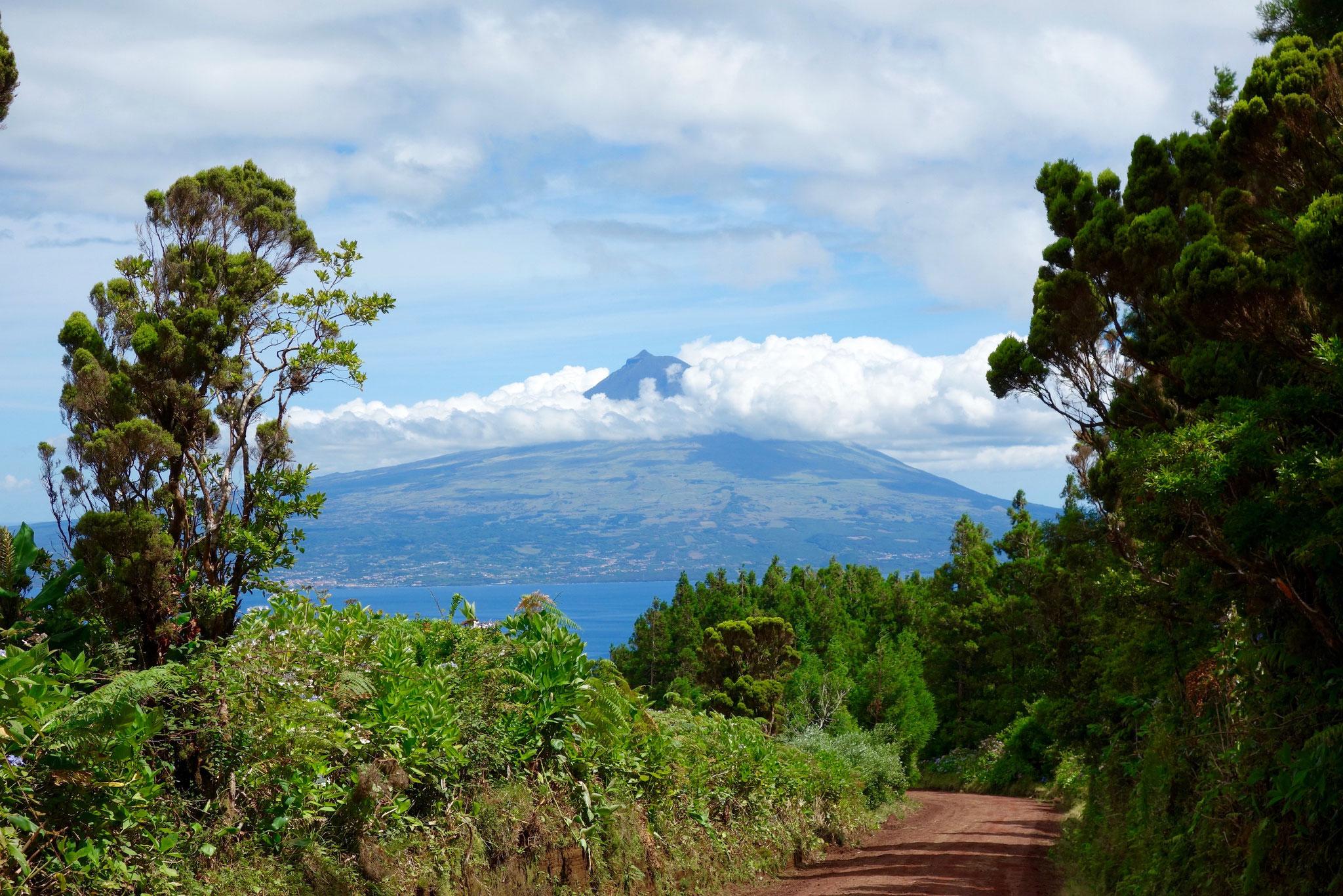 Ausblick auf Pico