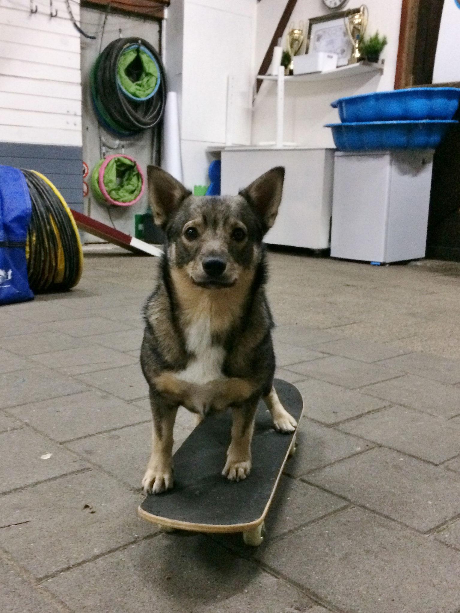 Voor het eerst op een skateboard