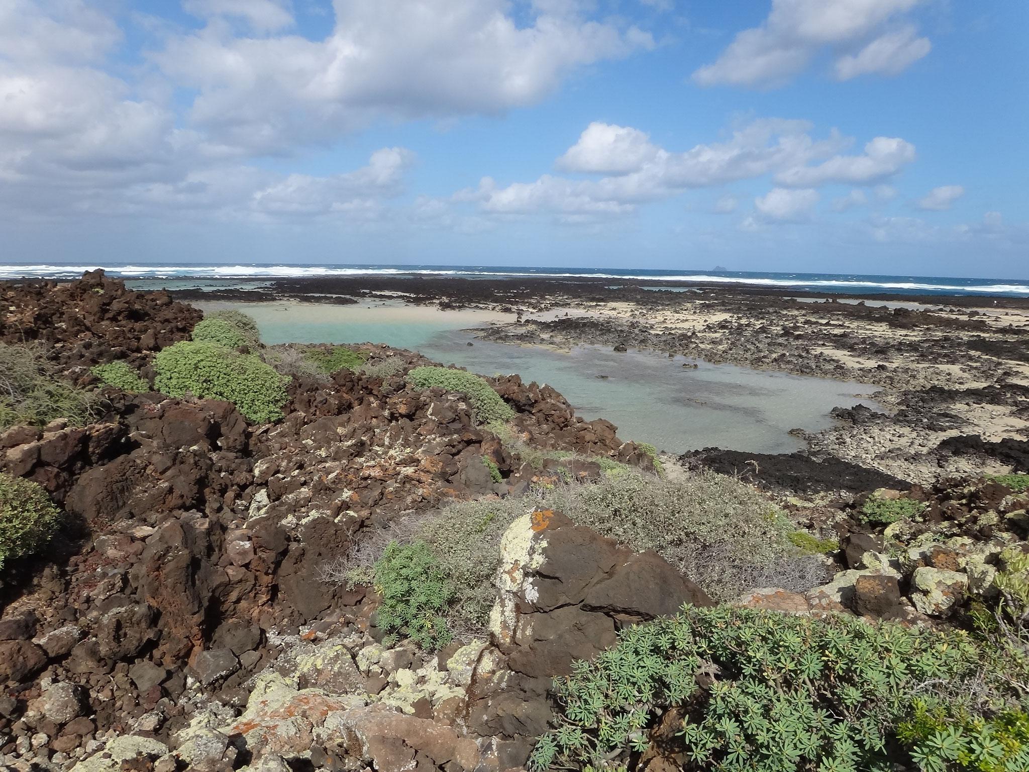 Lagune bei Orzola