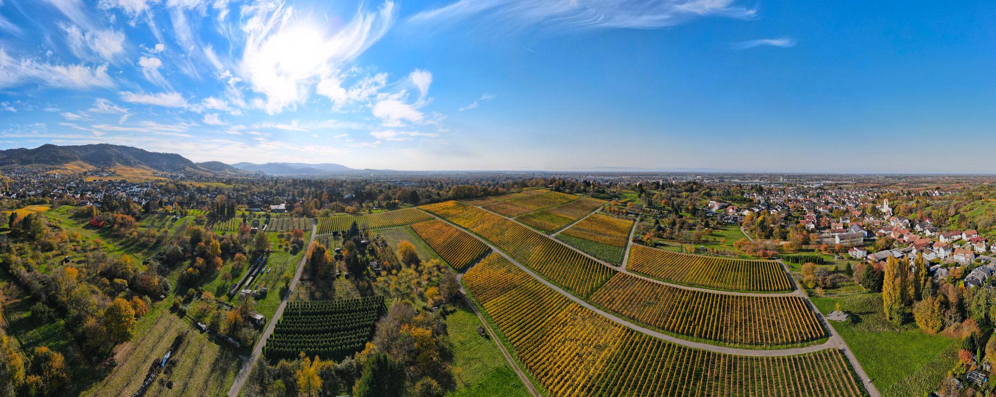 Herbst - Panorama über Offenburg