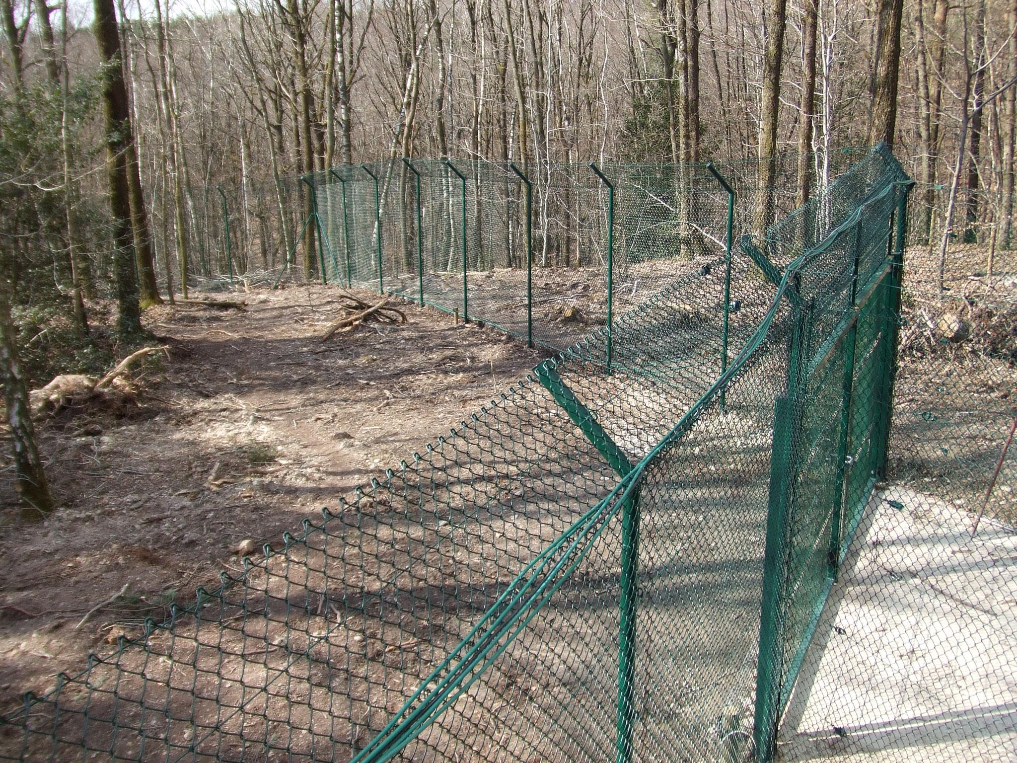 clôture des loups du Parc Argonne Découverte