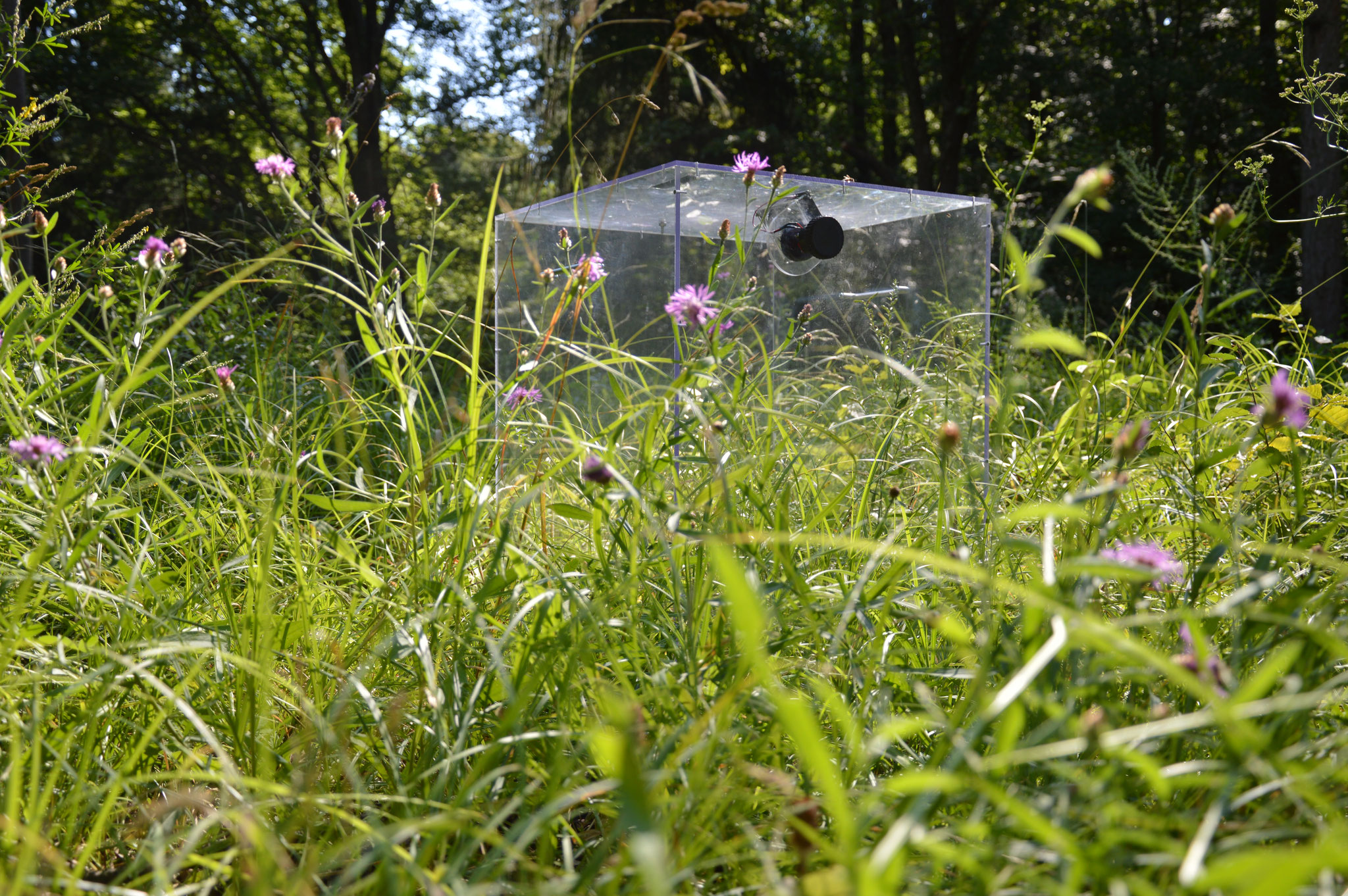 Ecosystem Respiration Chambers