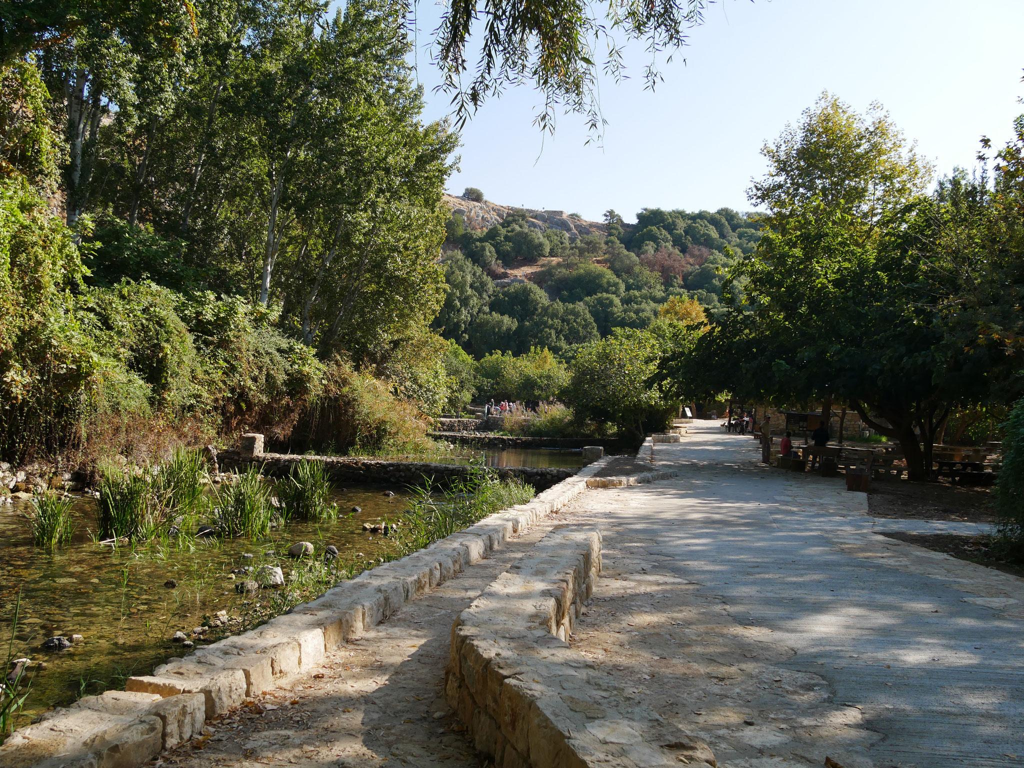 Banias - eine der Jordanquellen
