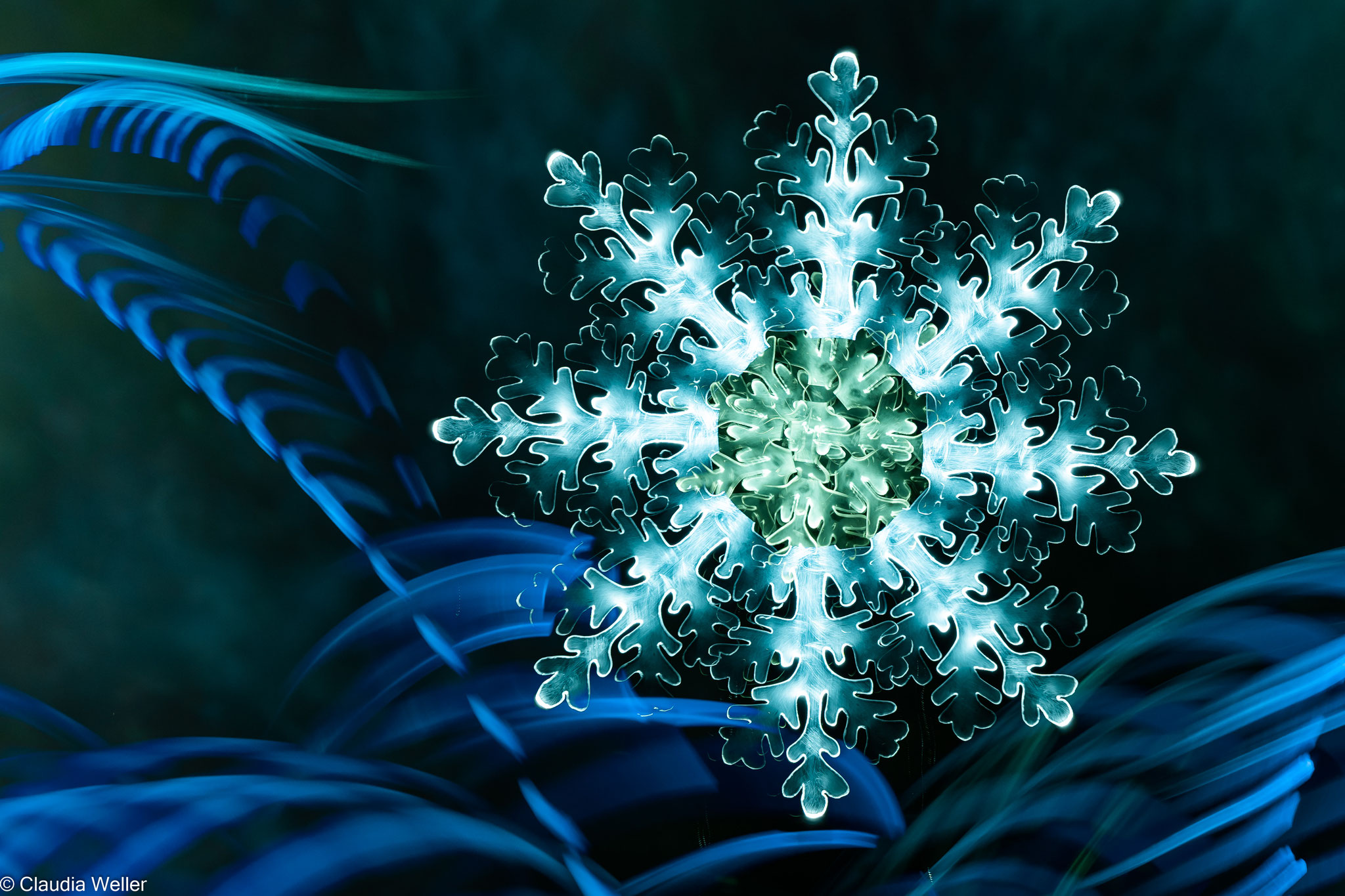 Eiskristallblömke II