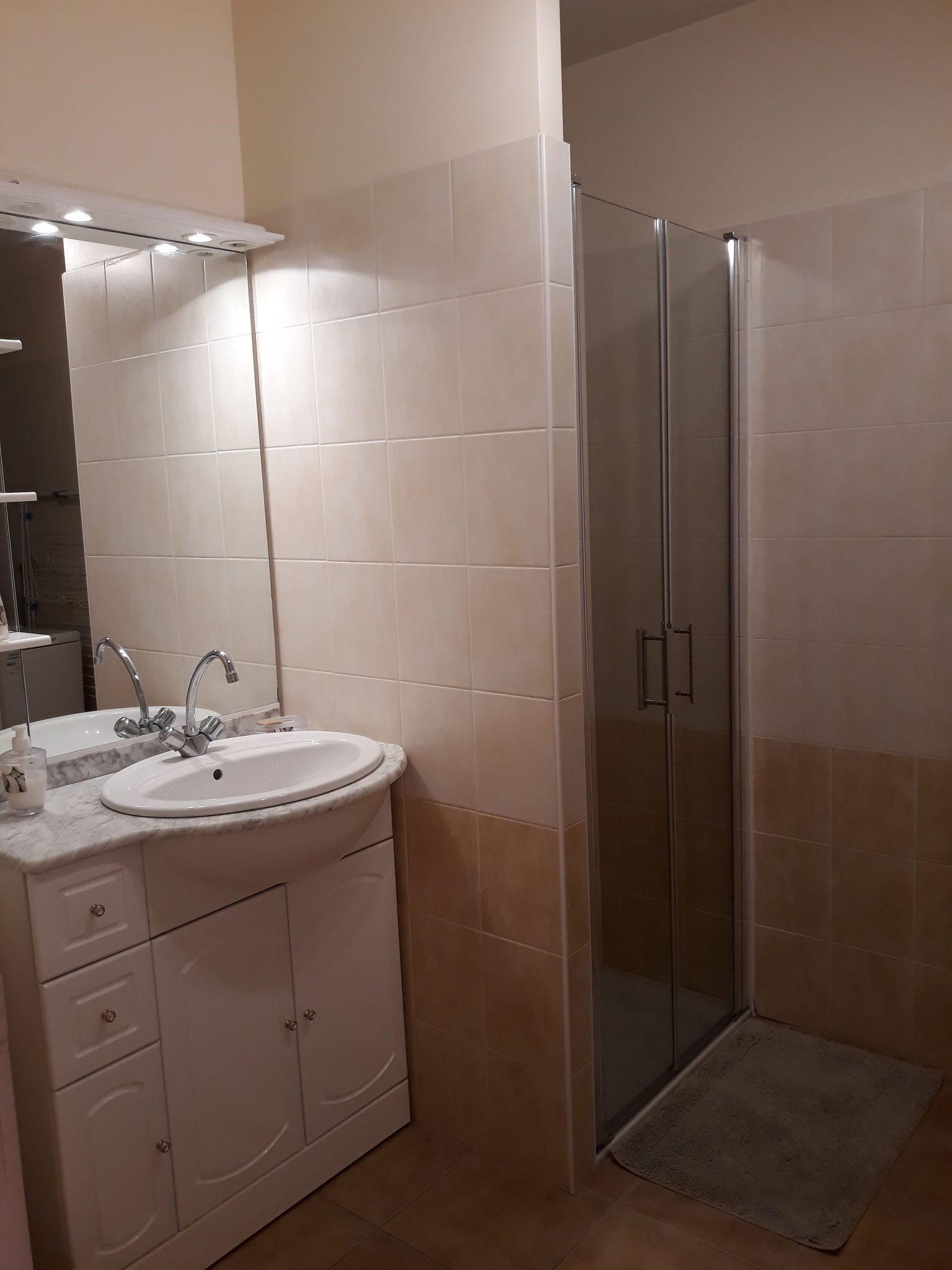 La salle de bains avec douche et machine à laver