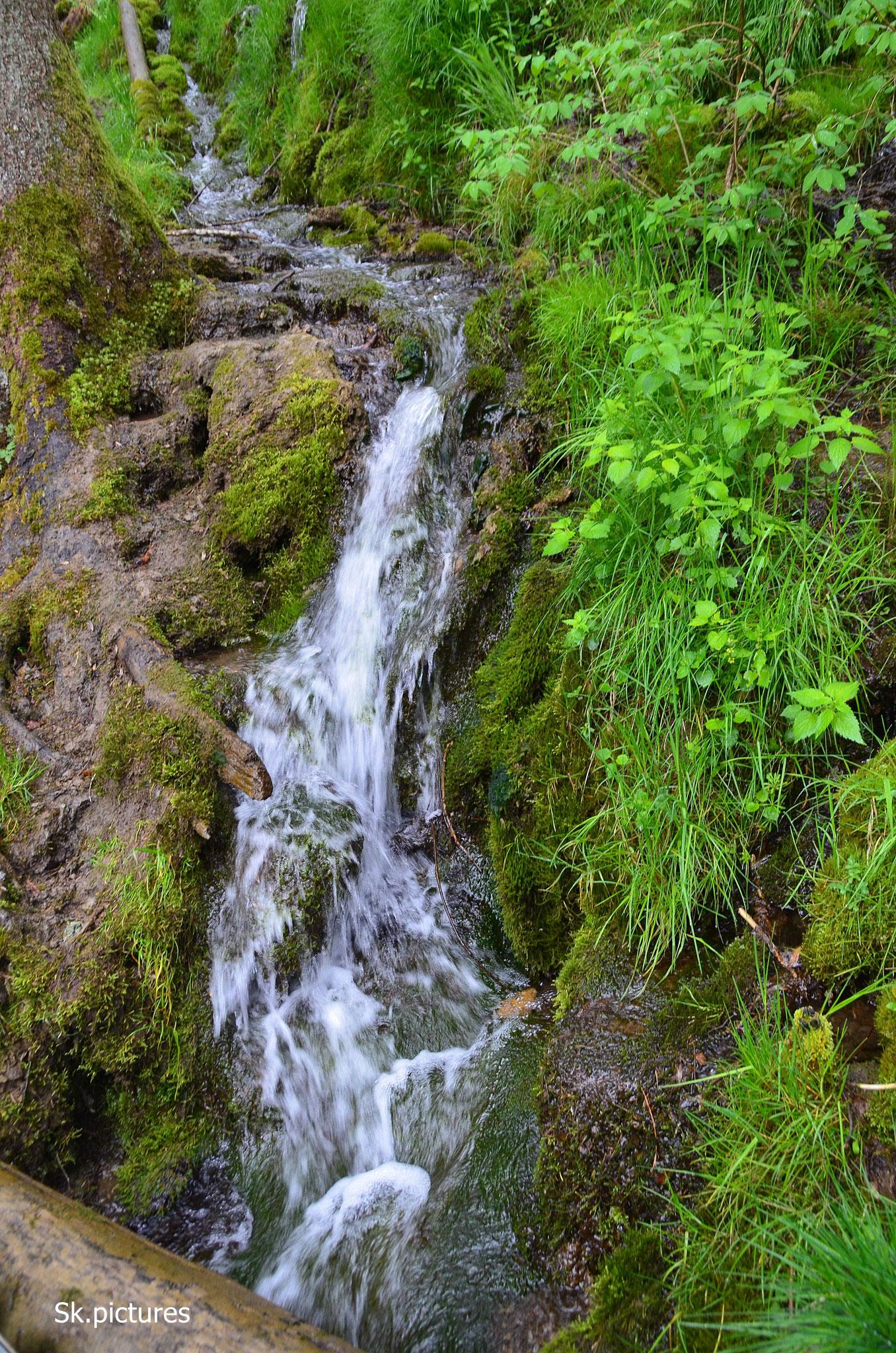 Wasserfall Wutach