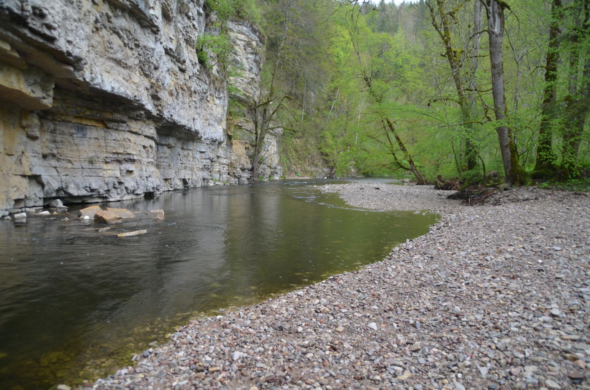 Wutach - Hochschwarzwald
