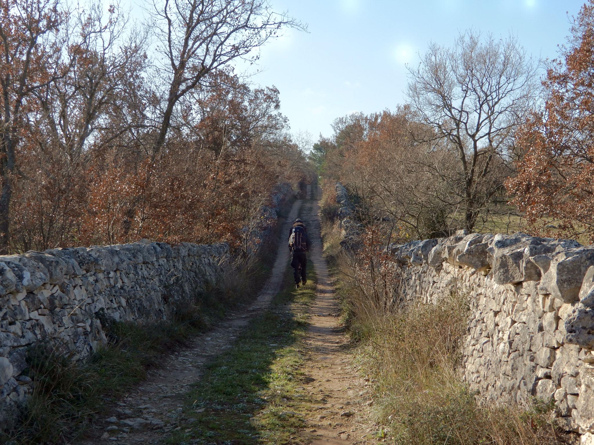 Tra i muretti a secco, patrimonio UNESCO