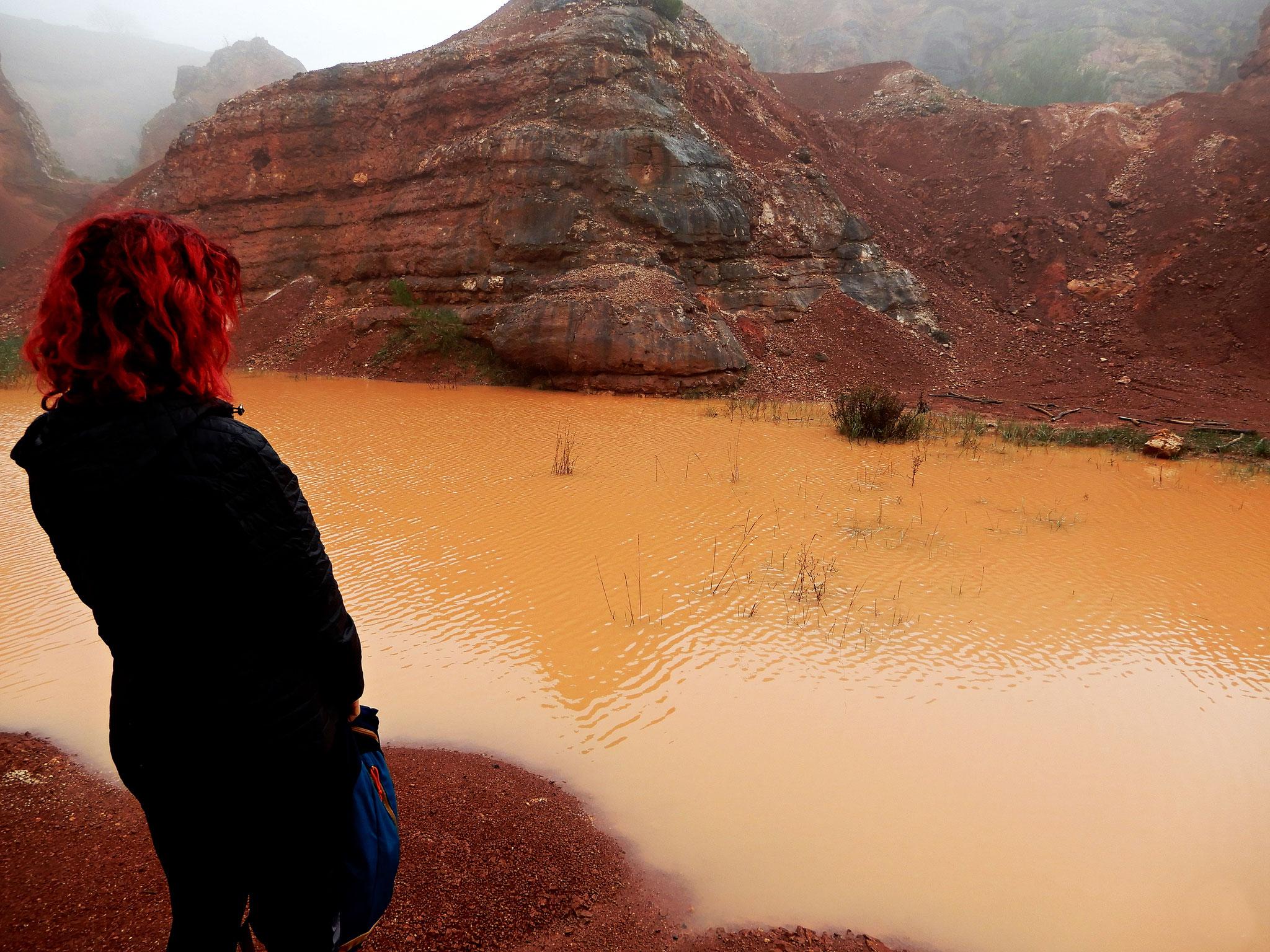 Di colore rosso fegato data la presenza prevalente di ossidi e idrossidi di ferro, la bauxite sotto forma argillosa presenta all'interno delle parti compatte a forma di noduli tondeggianti