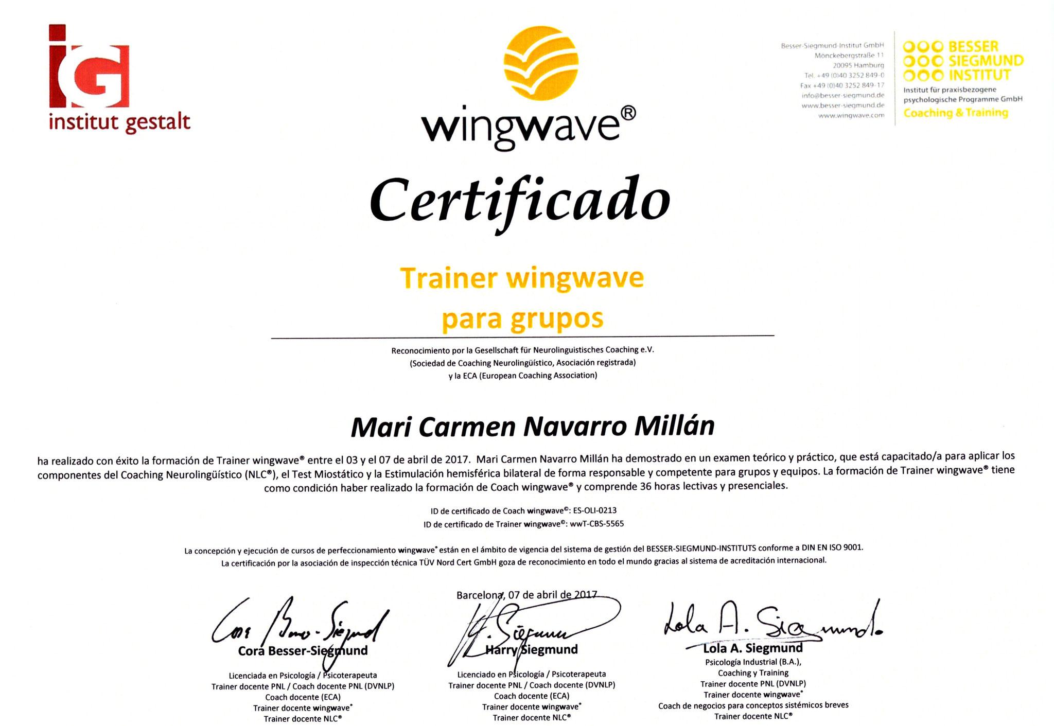 Certificación como Trainer Wingwave® para grupos