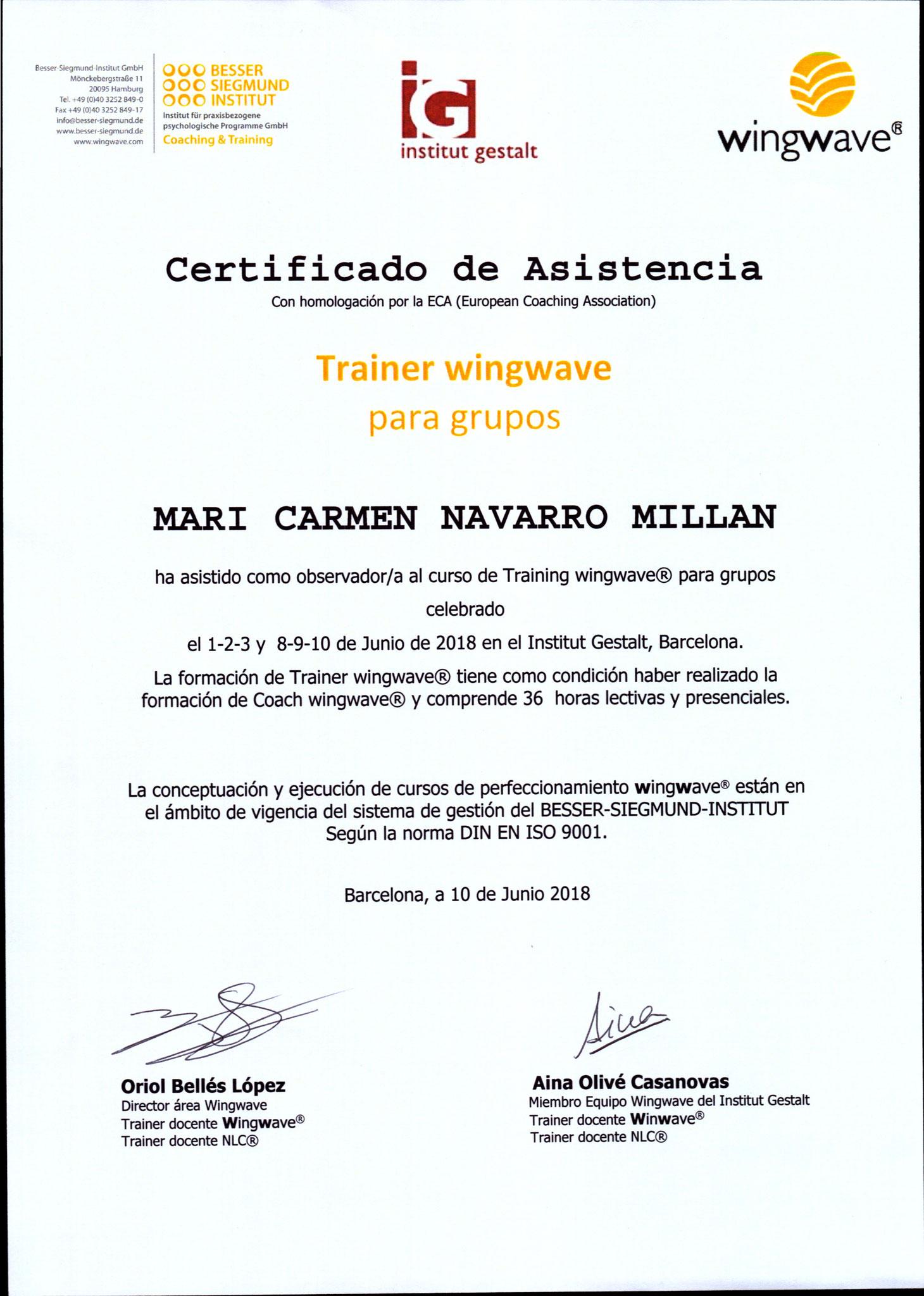 Certificado como asistente en la 2ª promoción de España de Trainers Wingwave®