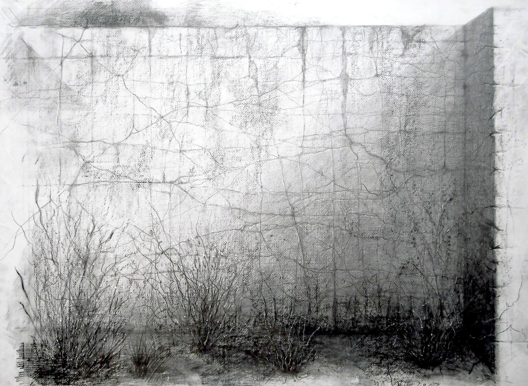 「時の系譜」 鉛筆・画用紙