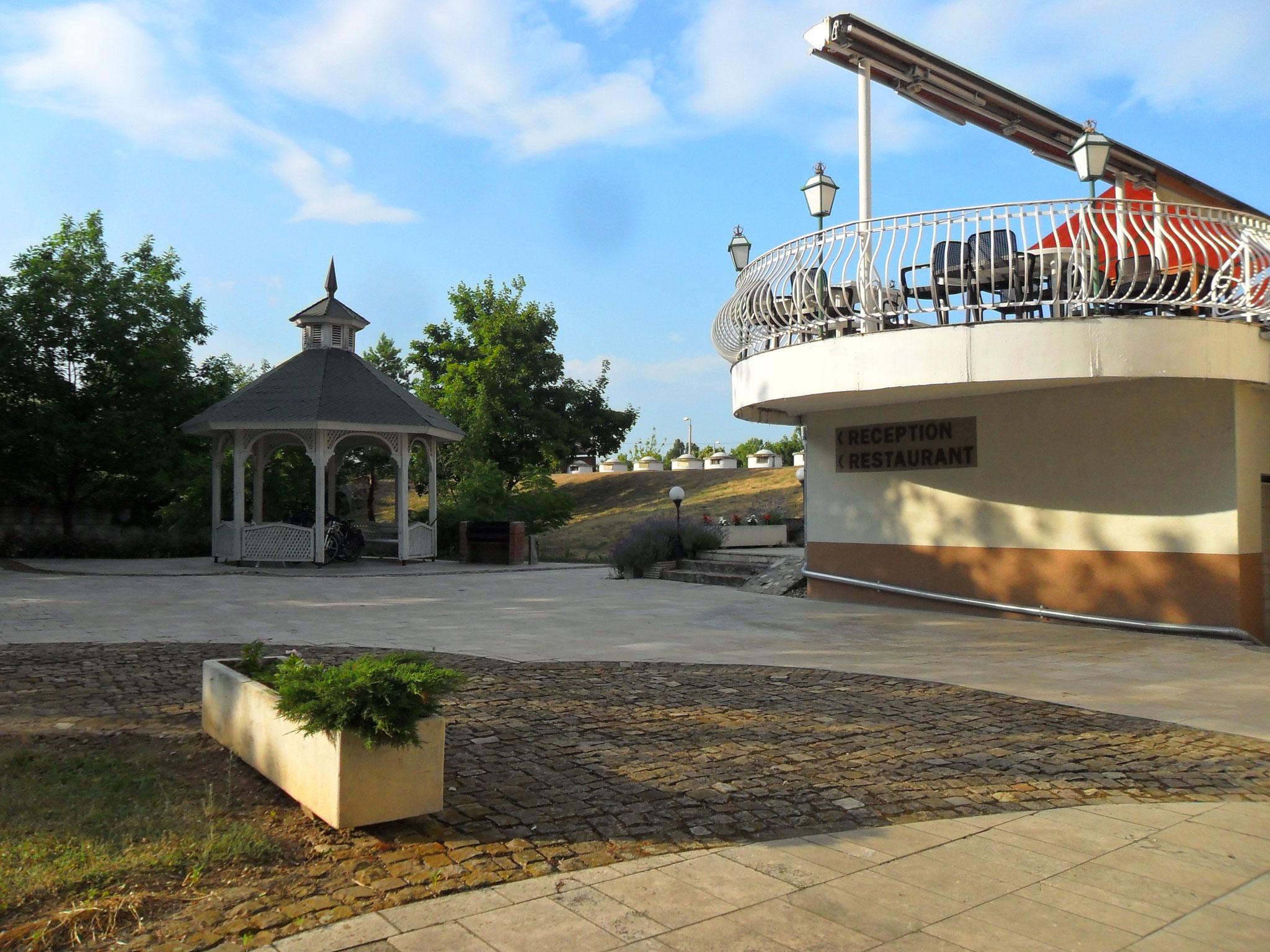 hinter dem Pavillon ist ein kleiner Froschteich und ein Maulbeerbaum