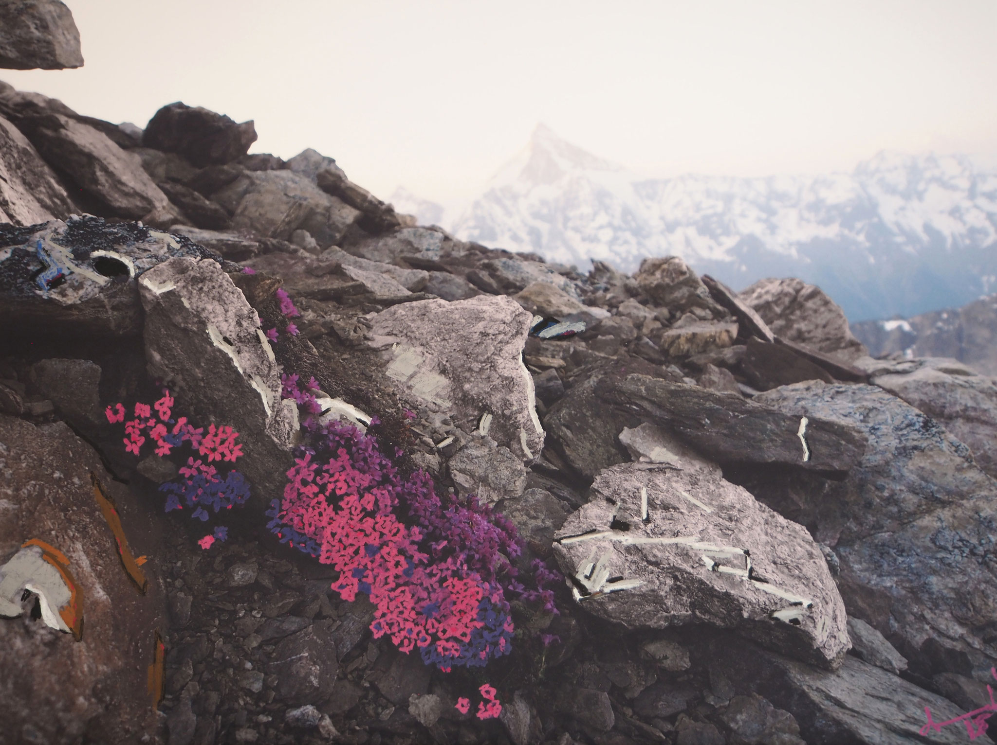 Alpenrosa 100cmx75cm - Blick vom Petersgrat zum Bietschhorn