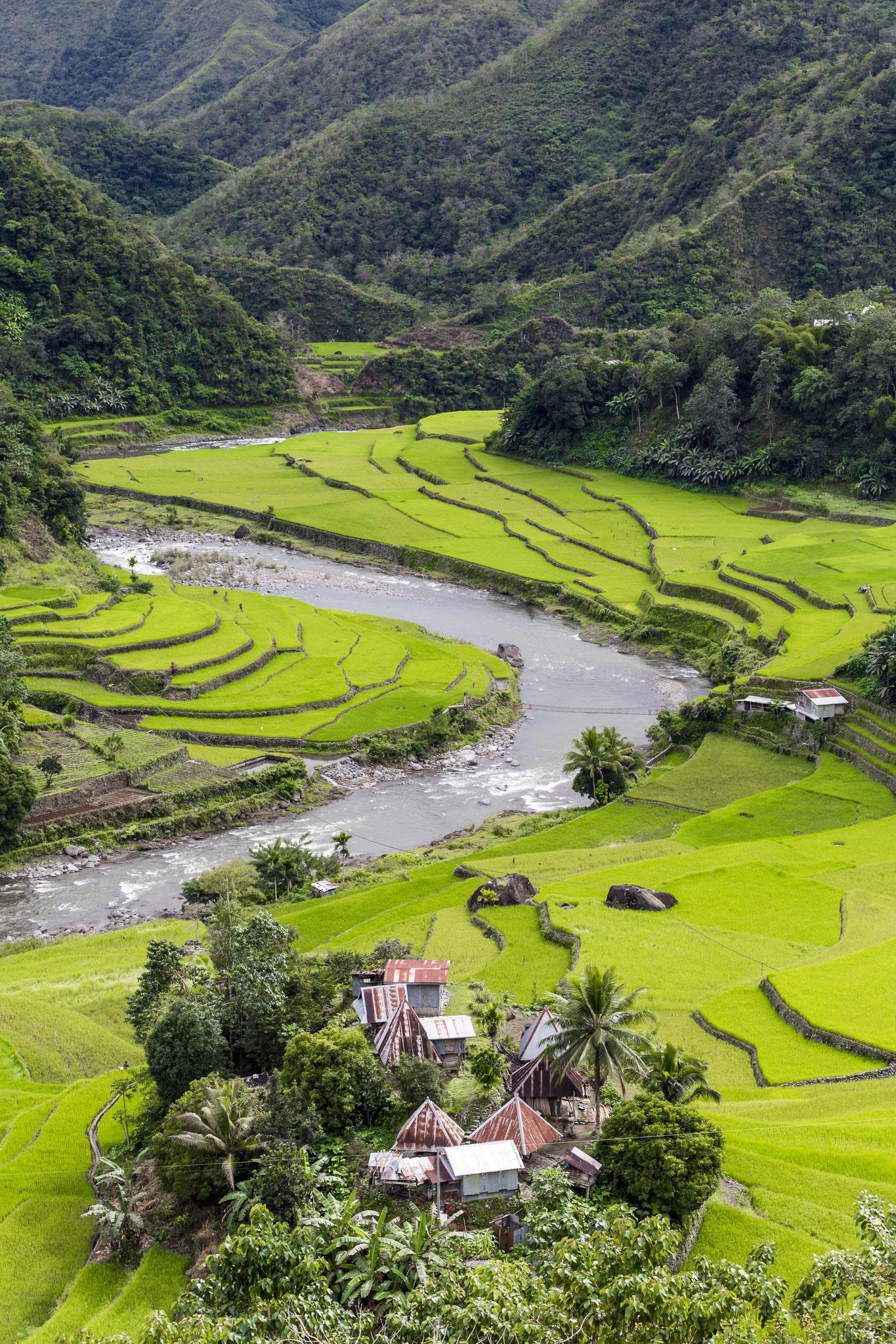 Banaue - Philippines  © 2017 Nik Schwald.