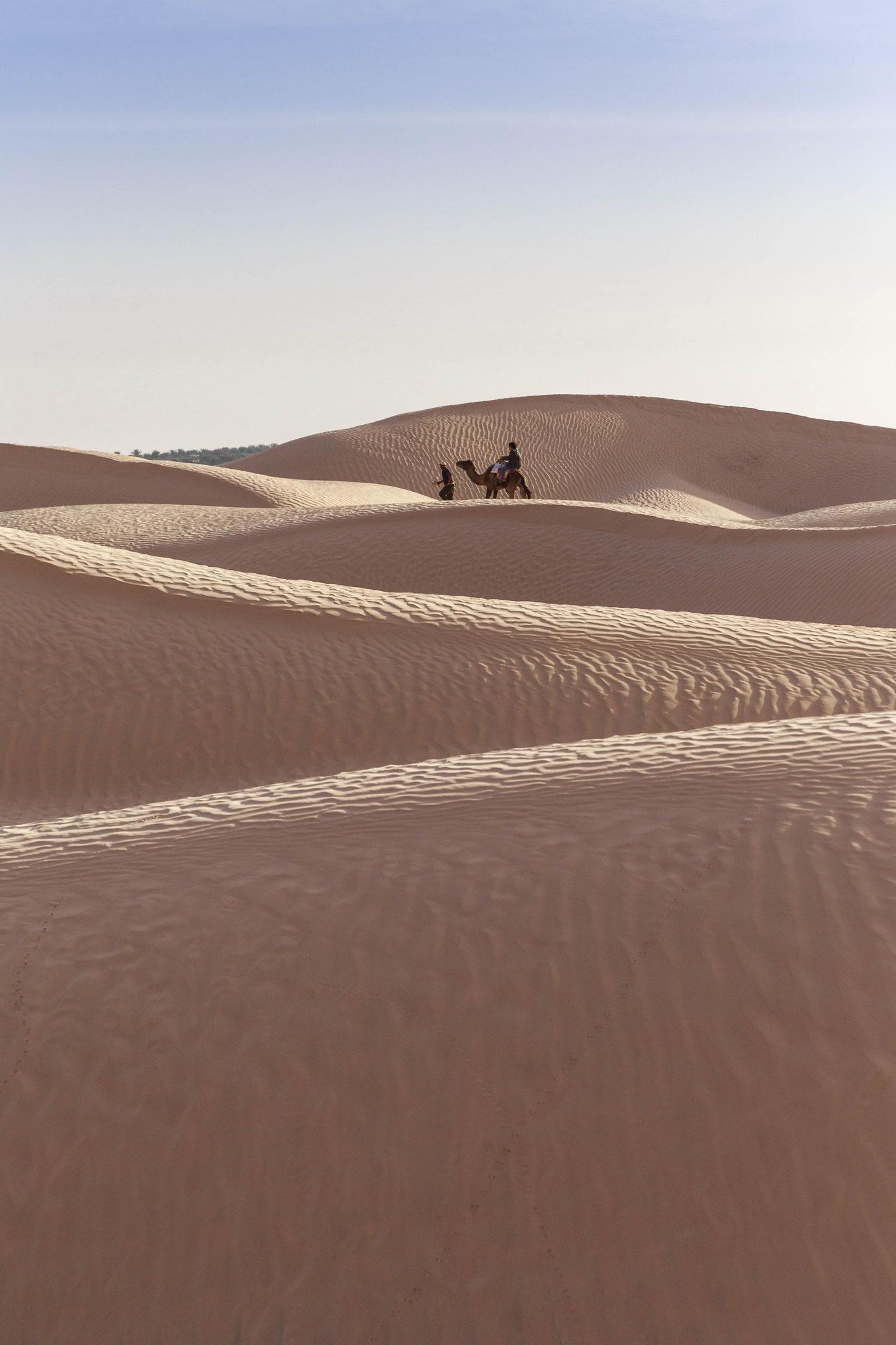 Sahara Desert, Douz.