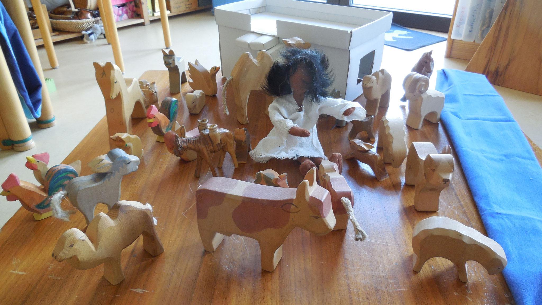Diese Tiere gab es sicher auch in Jesu Dorf.