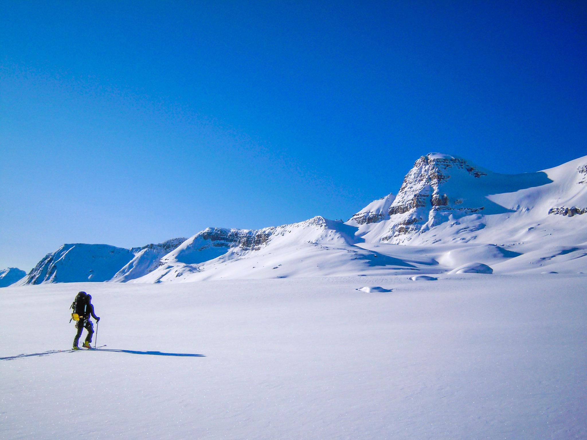 広大な氷原