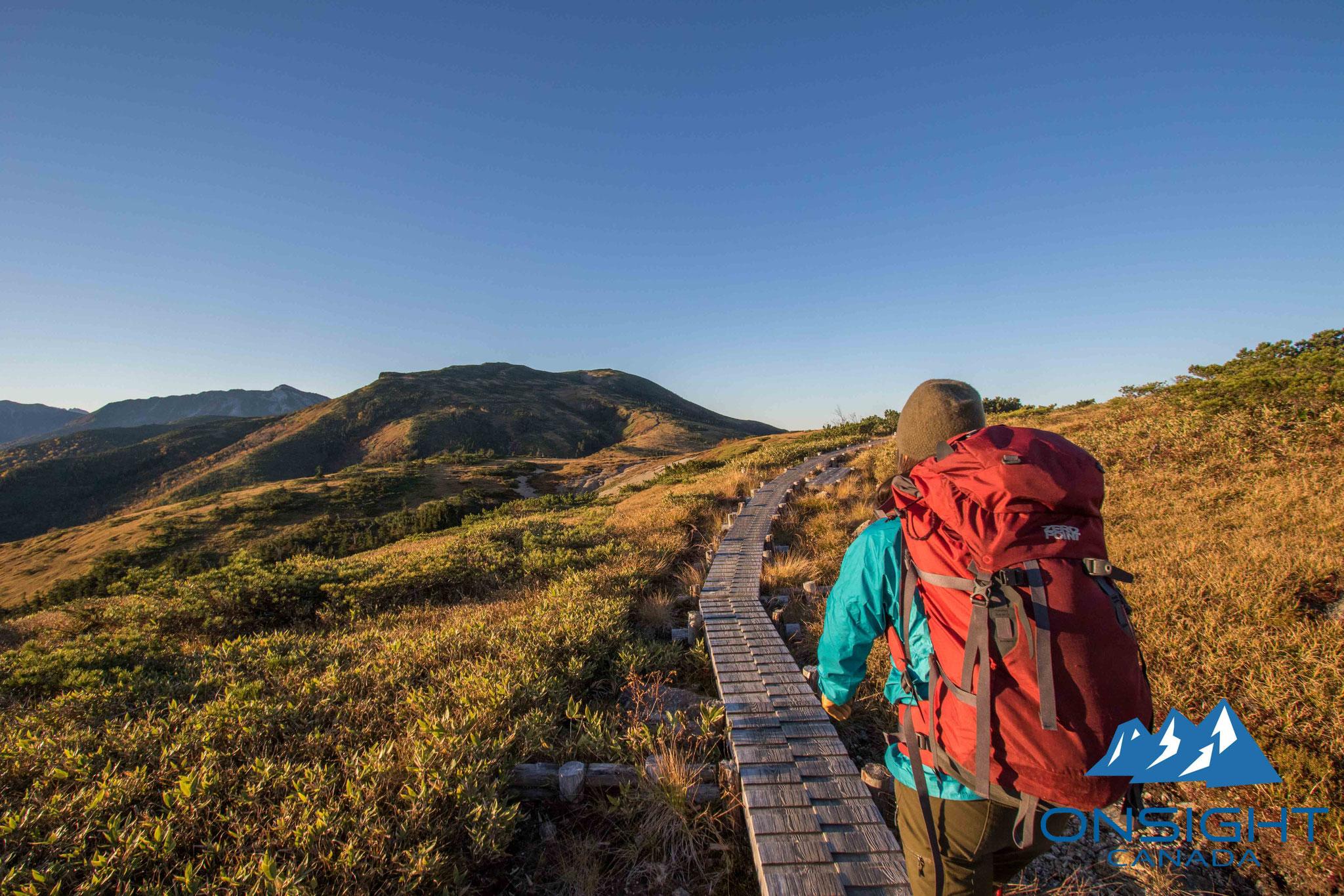 Board walk at high alpine