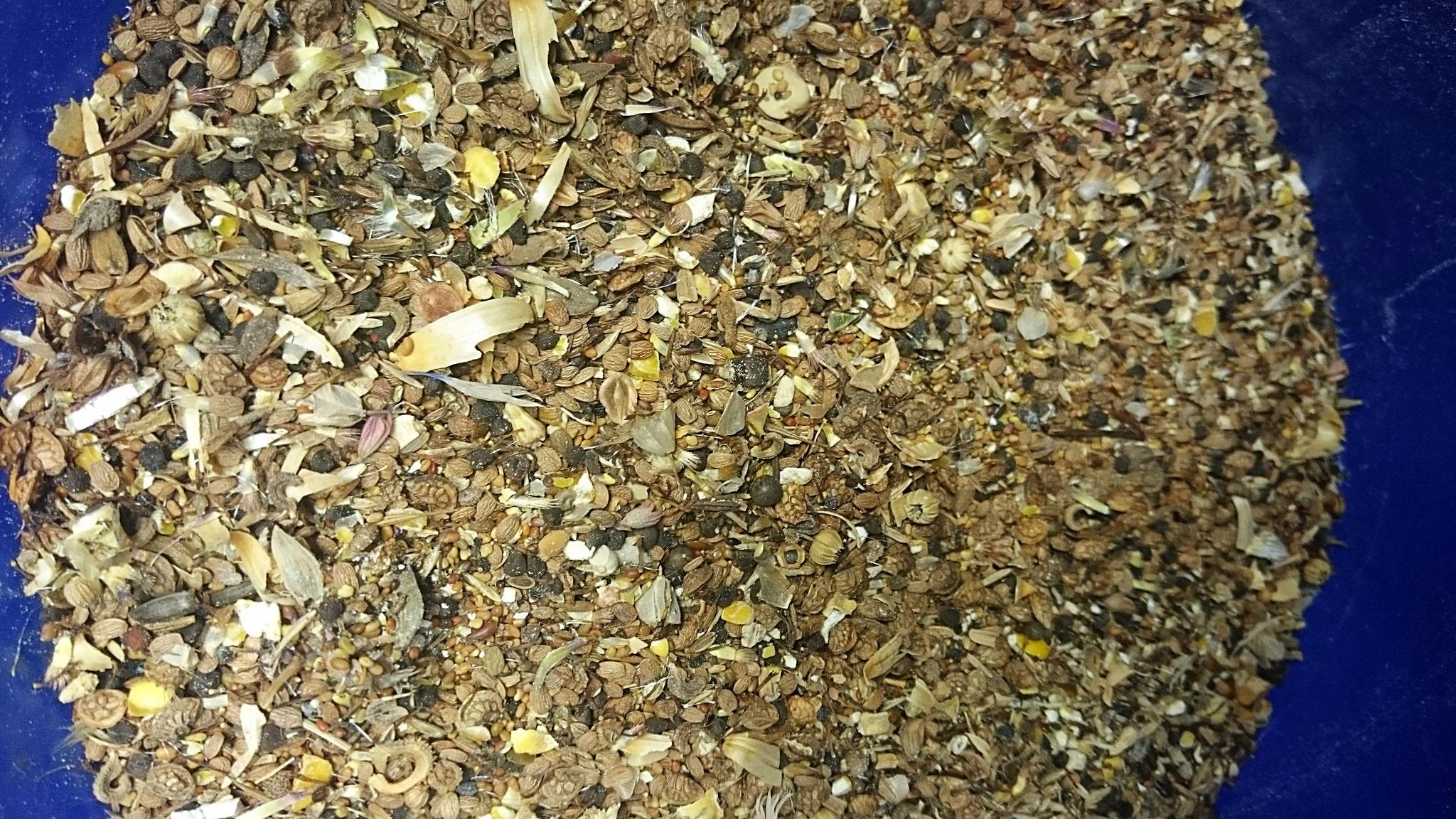 """alles im Eimer: heimische Samen von Blühpflanzen gemischt mit """"Bunter-Meter""""-Saatmischung ergibt eine ganz eigene Zusammensetzung - Foto: Britta Raabe"""