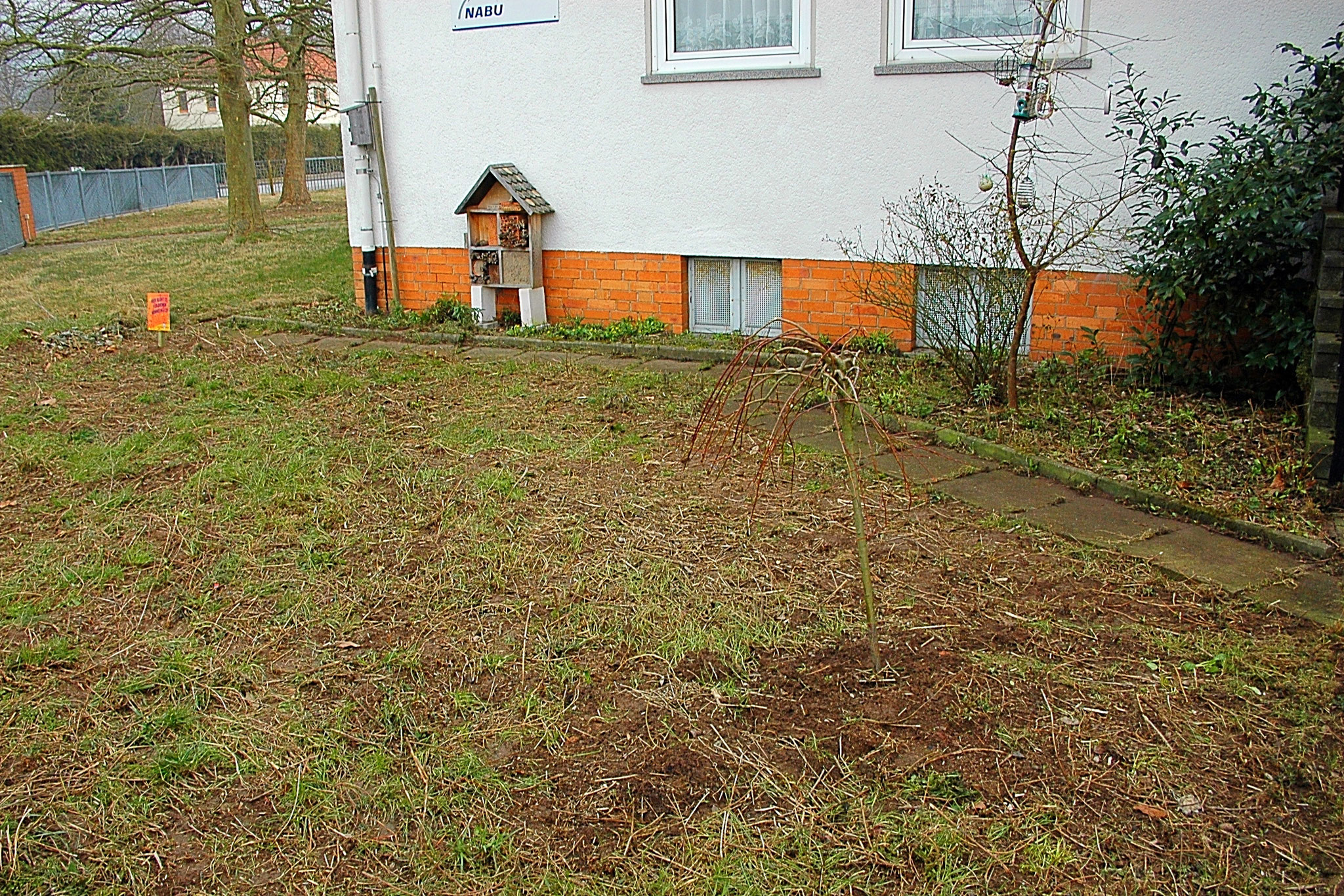 ... und nach 2 Stunden Entfernen des trockenen Pflanzenmaterials (Ende März) - Foto: Britta Raabe